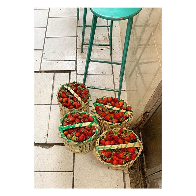 no plastic needed #strawberry #fresas🍓 #mexico #basket #foodpackaging #zeroplastic