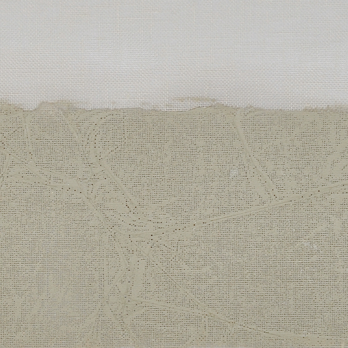 Y116-01 Green Desert