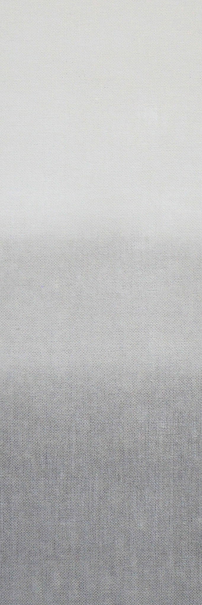 Y110-02 Fog