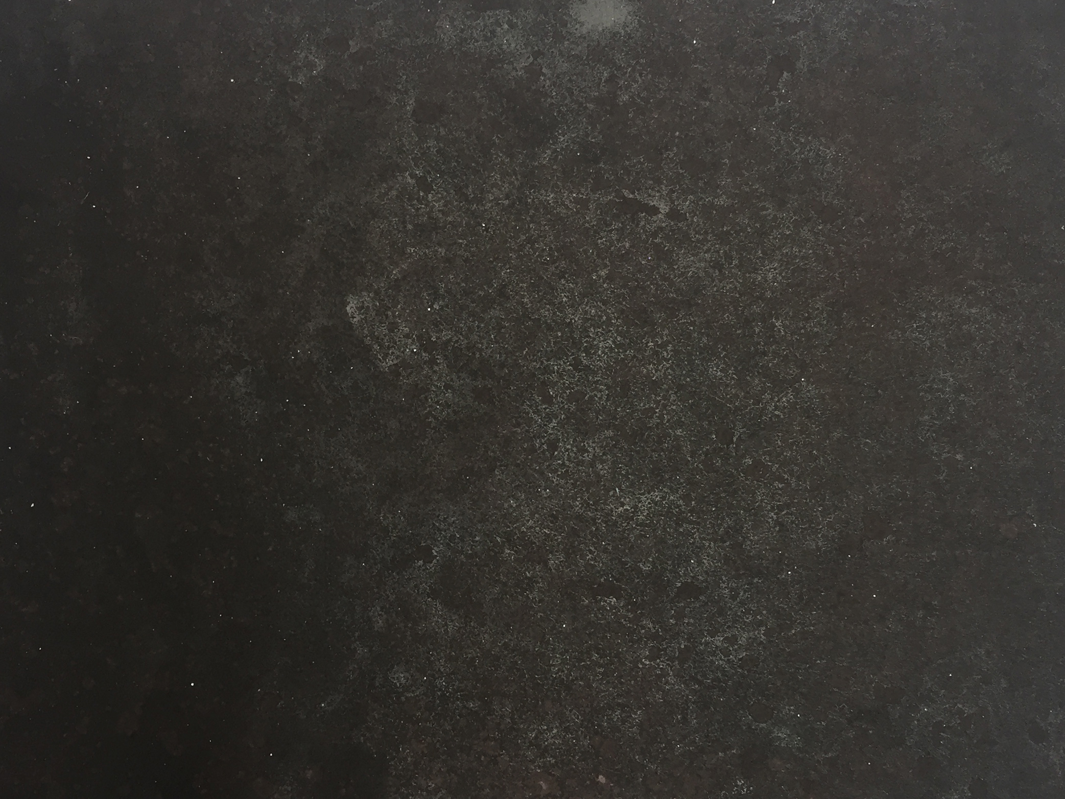 E1284 Prune (detail)