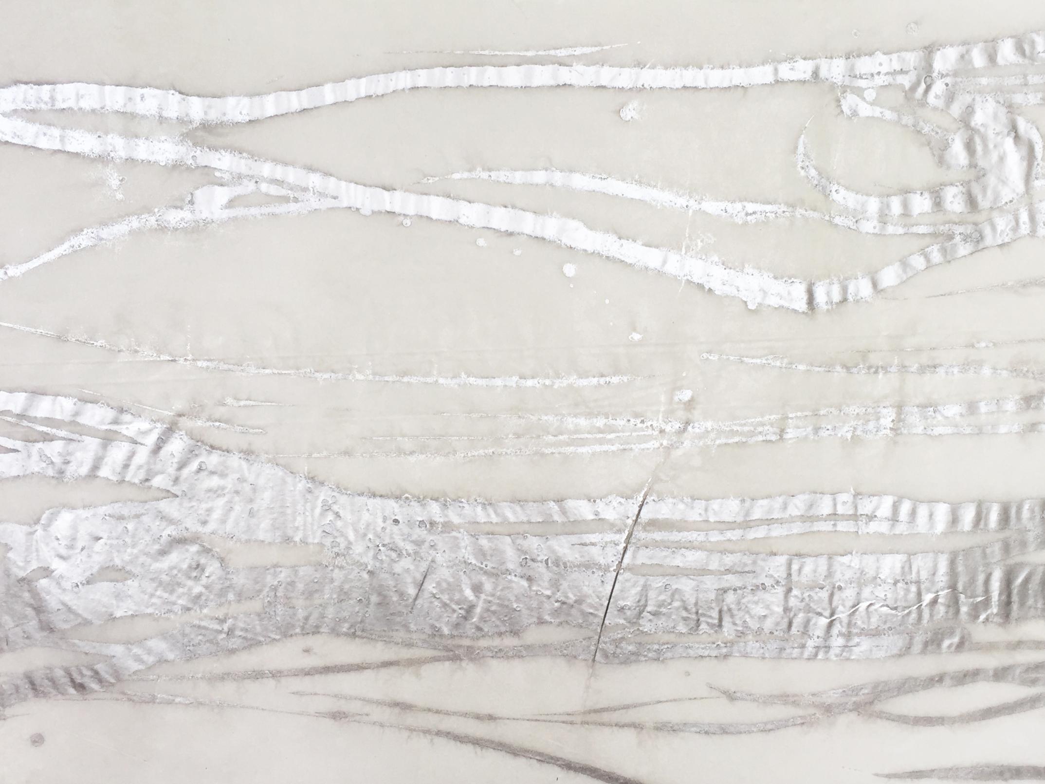 E1333 WOODGRAIN Silver/Vellum