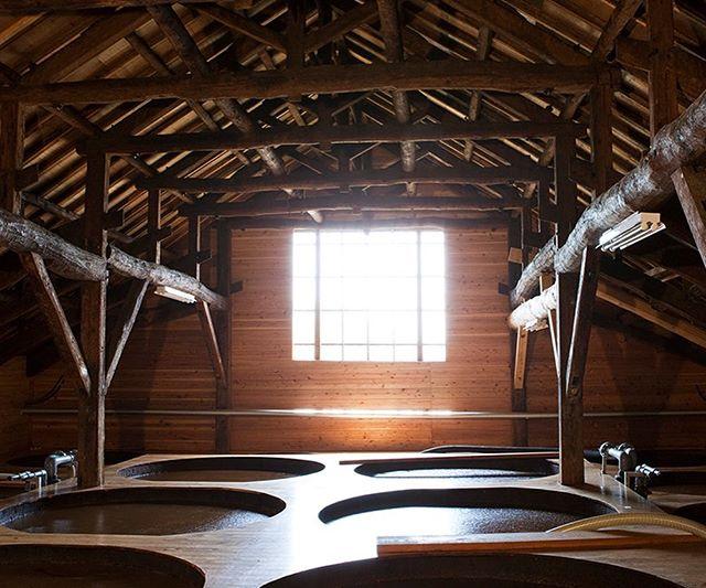 PÕNEV! 🍶Tokumaru kasutab oma köögis eranditult Shibanuma sojakastet, mida on Jaapanis toodetud juba läbi 18 põlvkonna ehk 320 aastat. Selle erilise kastme töötas 1688. aastal välja  Shozaemon Shibanuma. Sojakastme meeldiva, rikkaliku ning nüansirikka maitse ja aroomi saladuseks on kvaliteetne Ibaraki piirkonnast pärit tooraine ning kastme laagerdamine erilistes puidust vaatides.  Shibanuma sojakastet peetakse üheks parimaks Jaapanis. #tokumaru #heajaapanitoit #shibanuma #soja #puhaskvaliteet