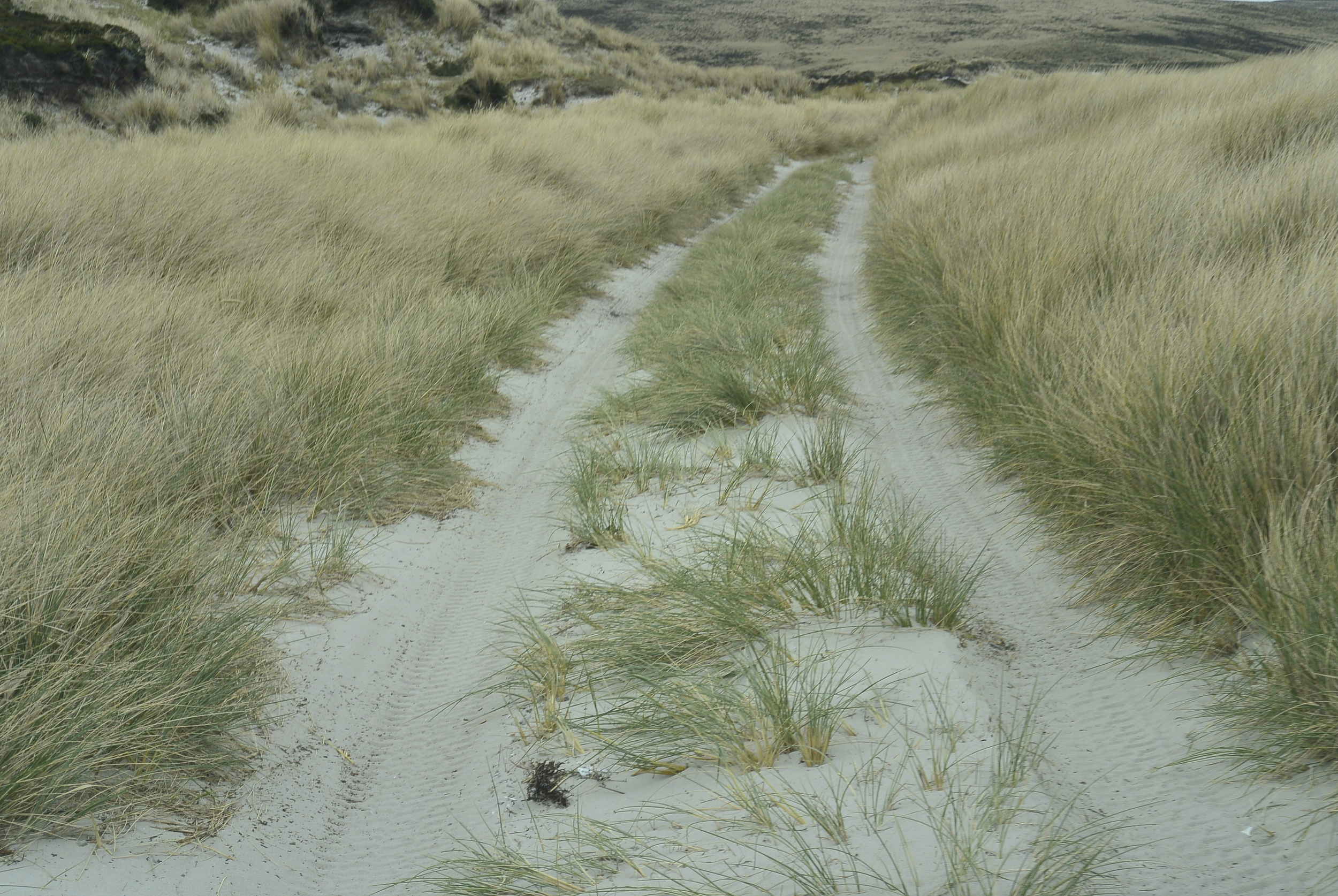 Falkland Islands Tracks
