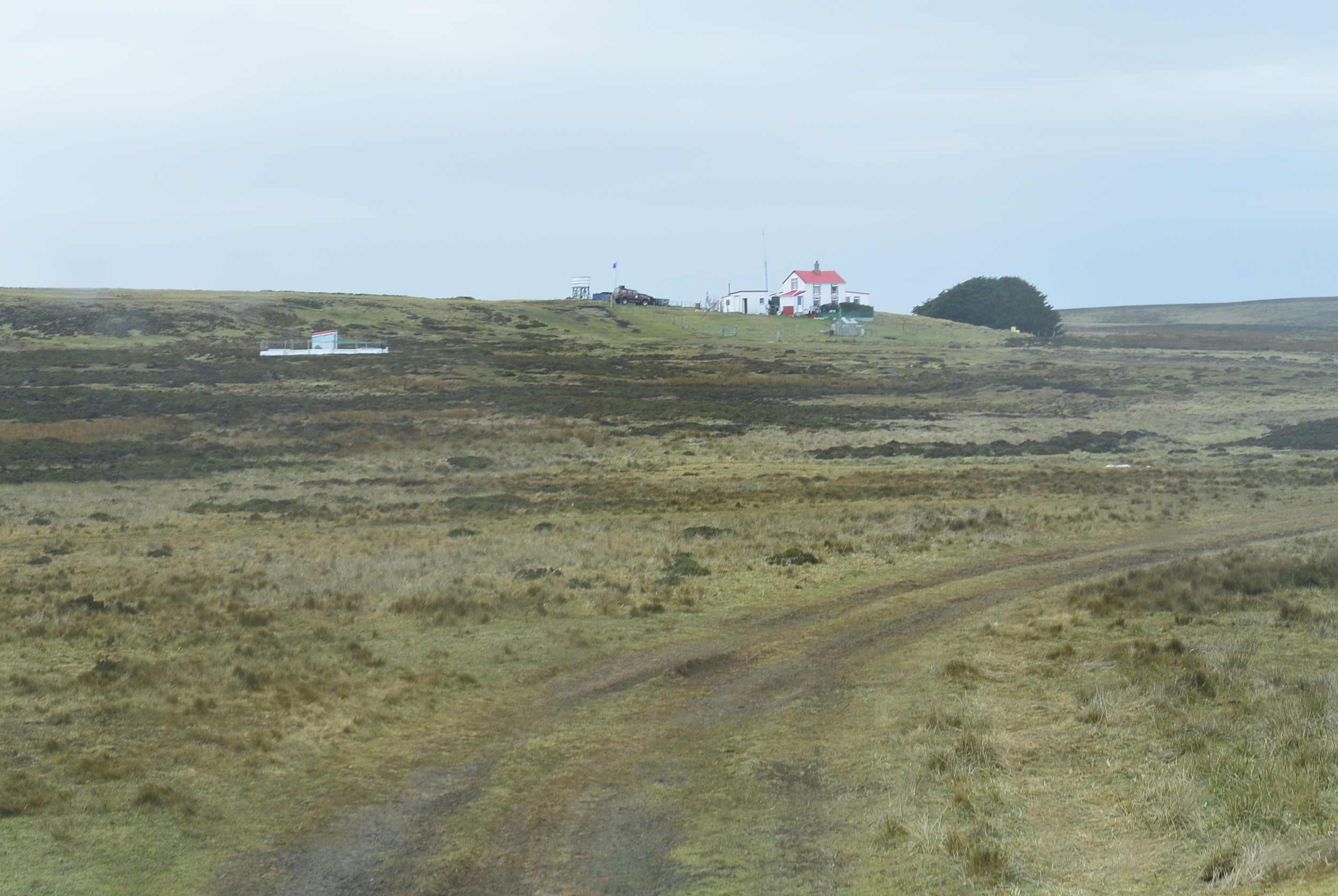 Falkland Islands Volunteer Point