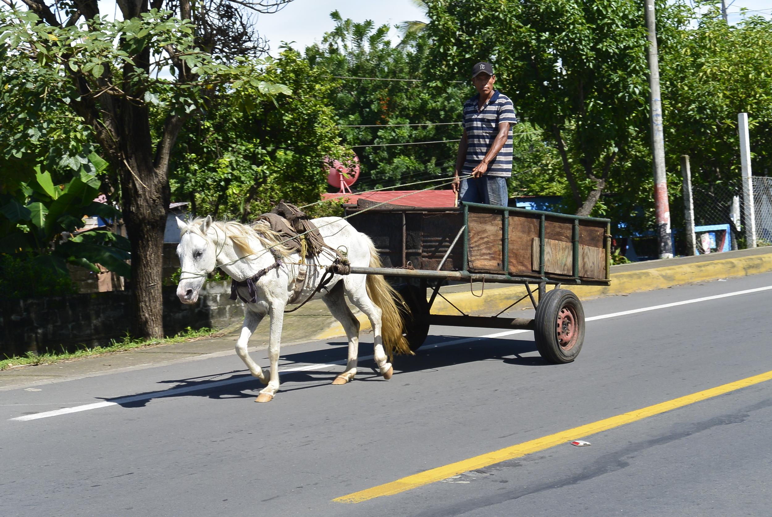 Corinto Nicaragua Horse Drawn Wagon