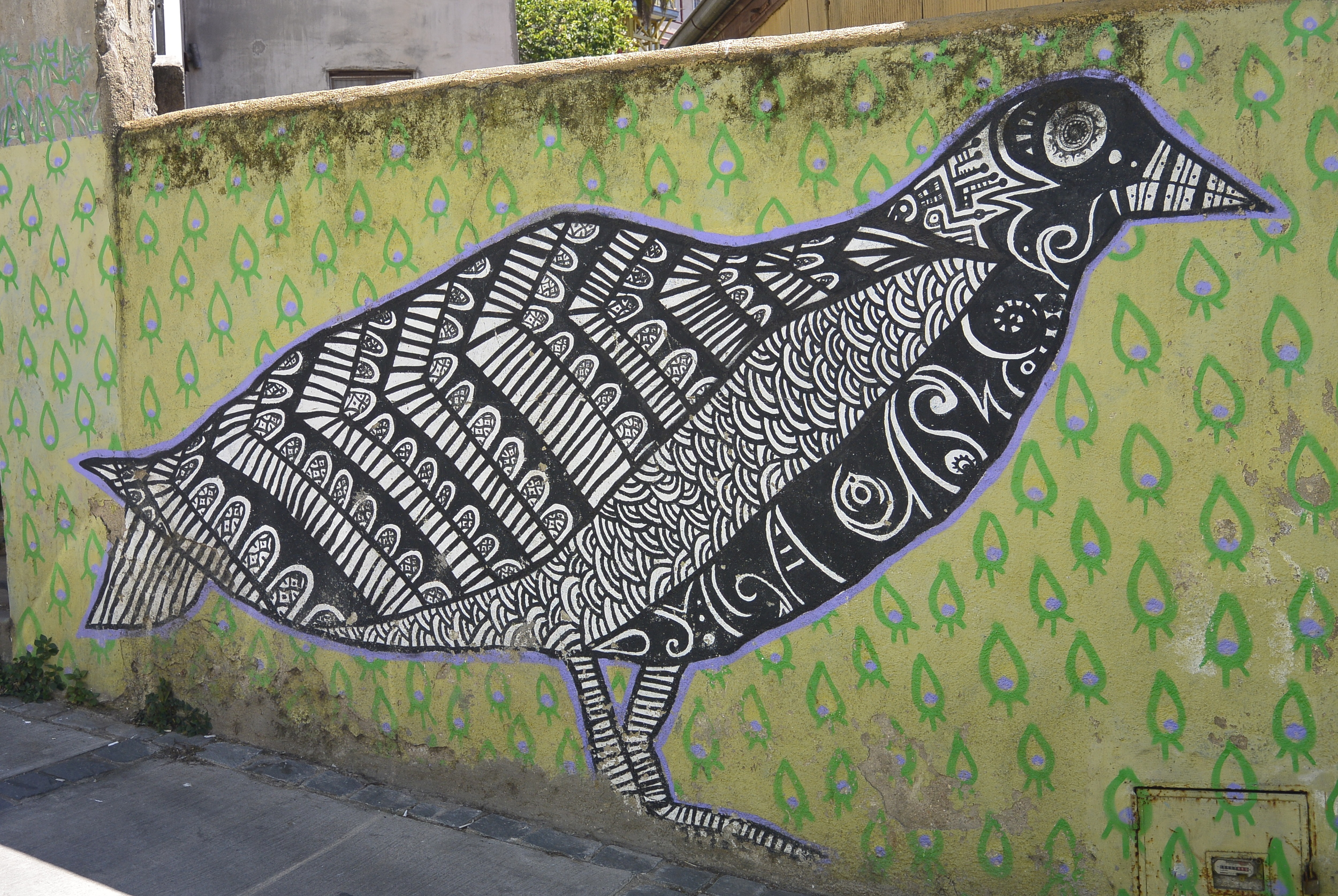Valparaiso Steet Art Graffiti Bird