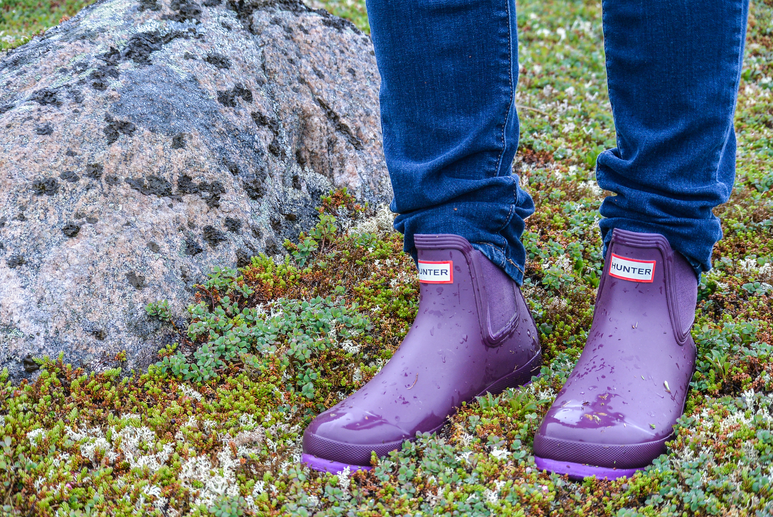 Hunter Boots Red Bay Labrador
