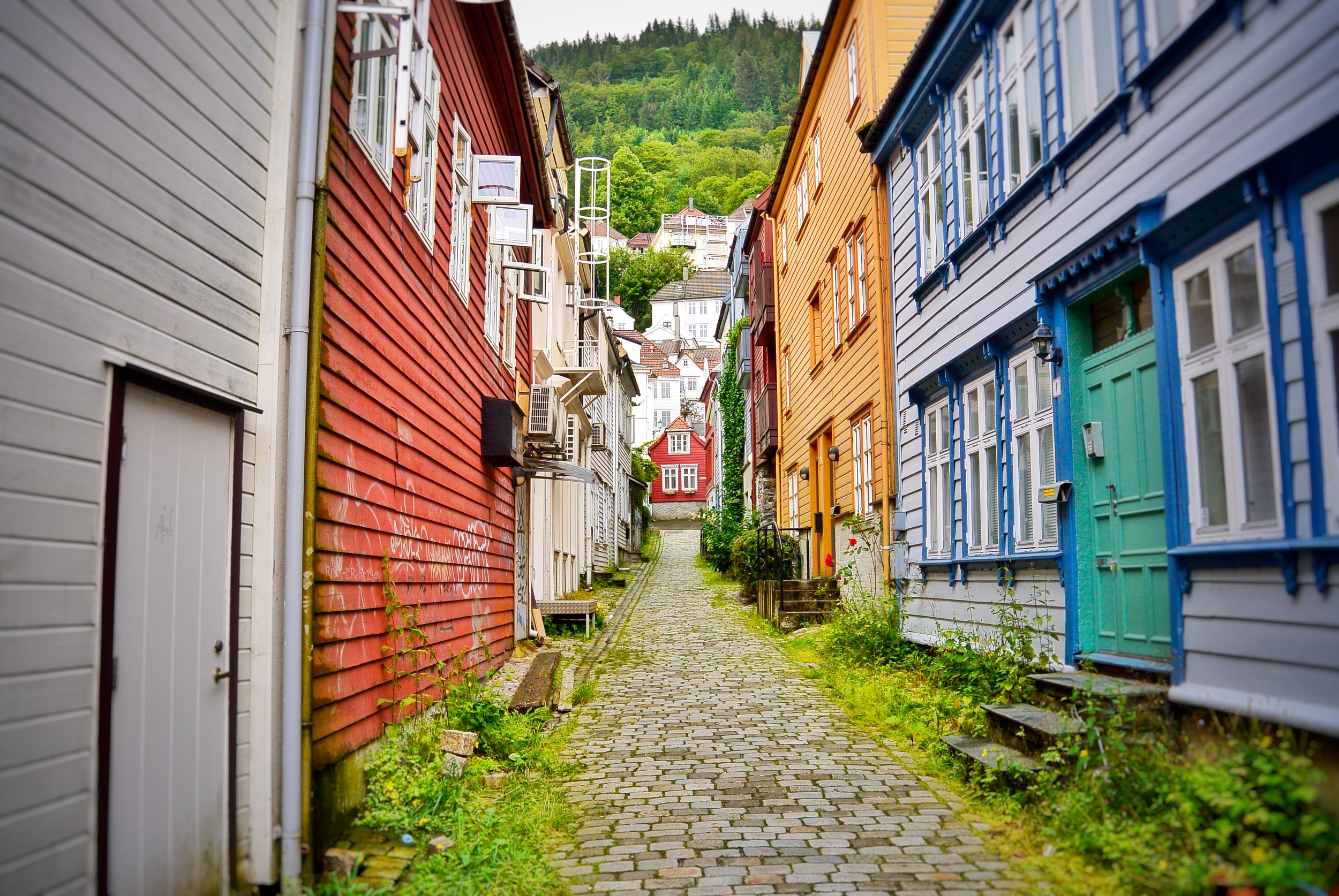 Downtown Bergen Colorful Alley