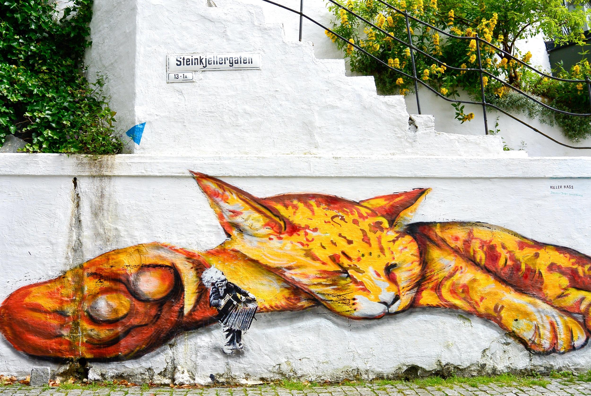 Cat Street Art Bergen
