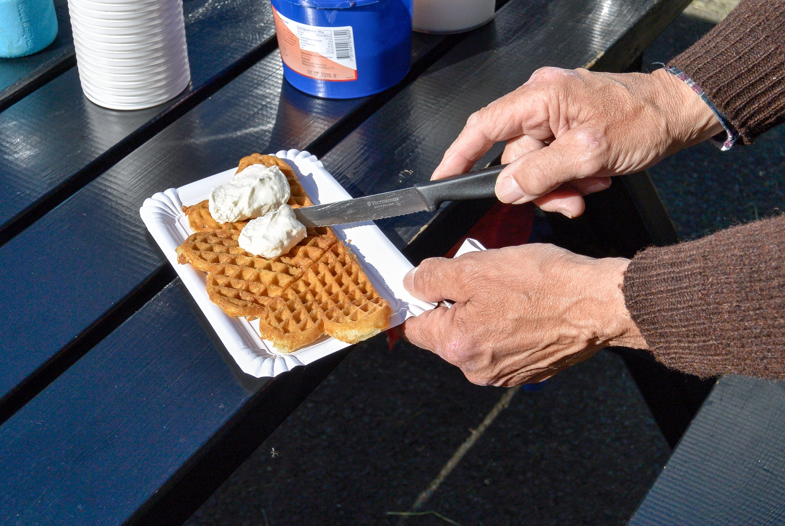 Faroese Waffles