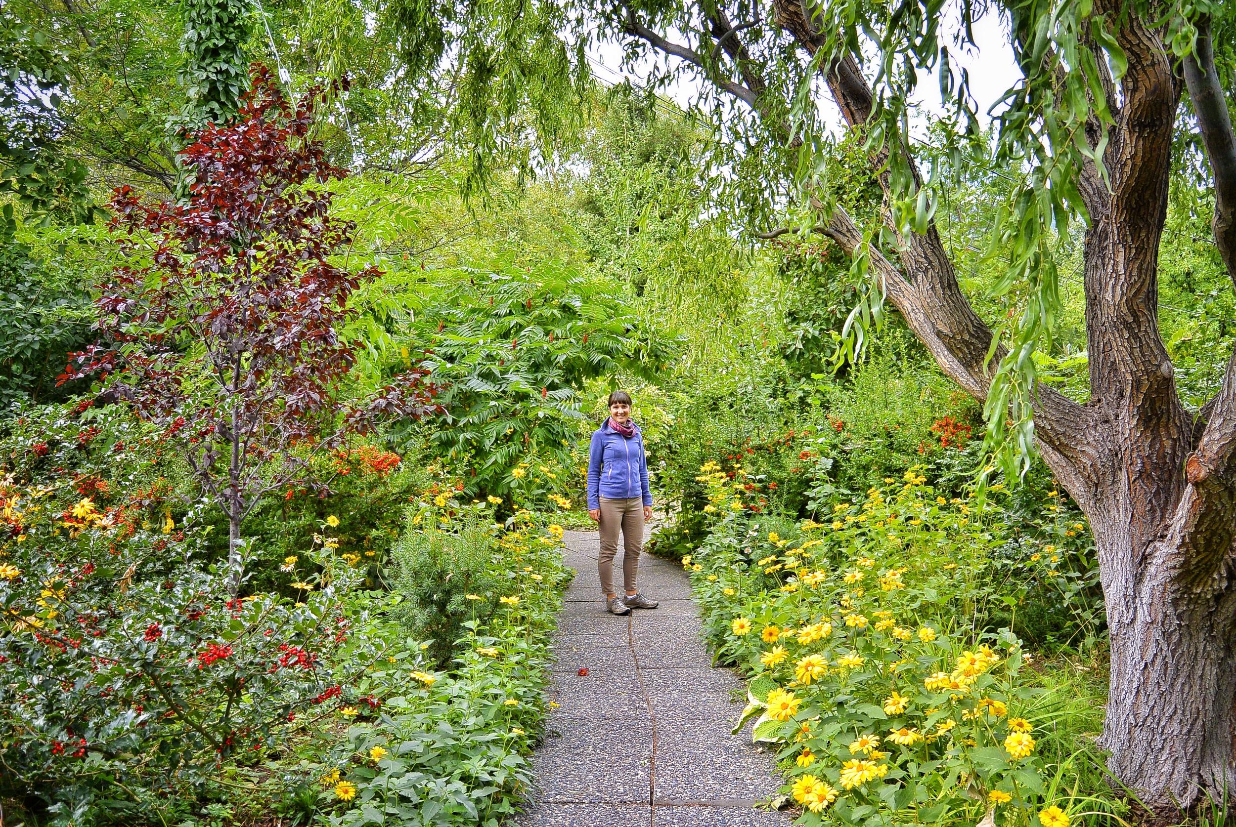 Linden Gardens