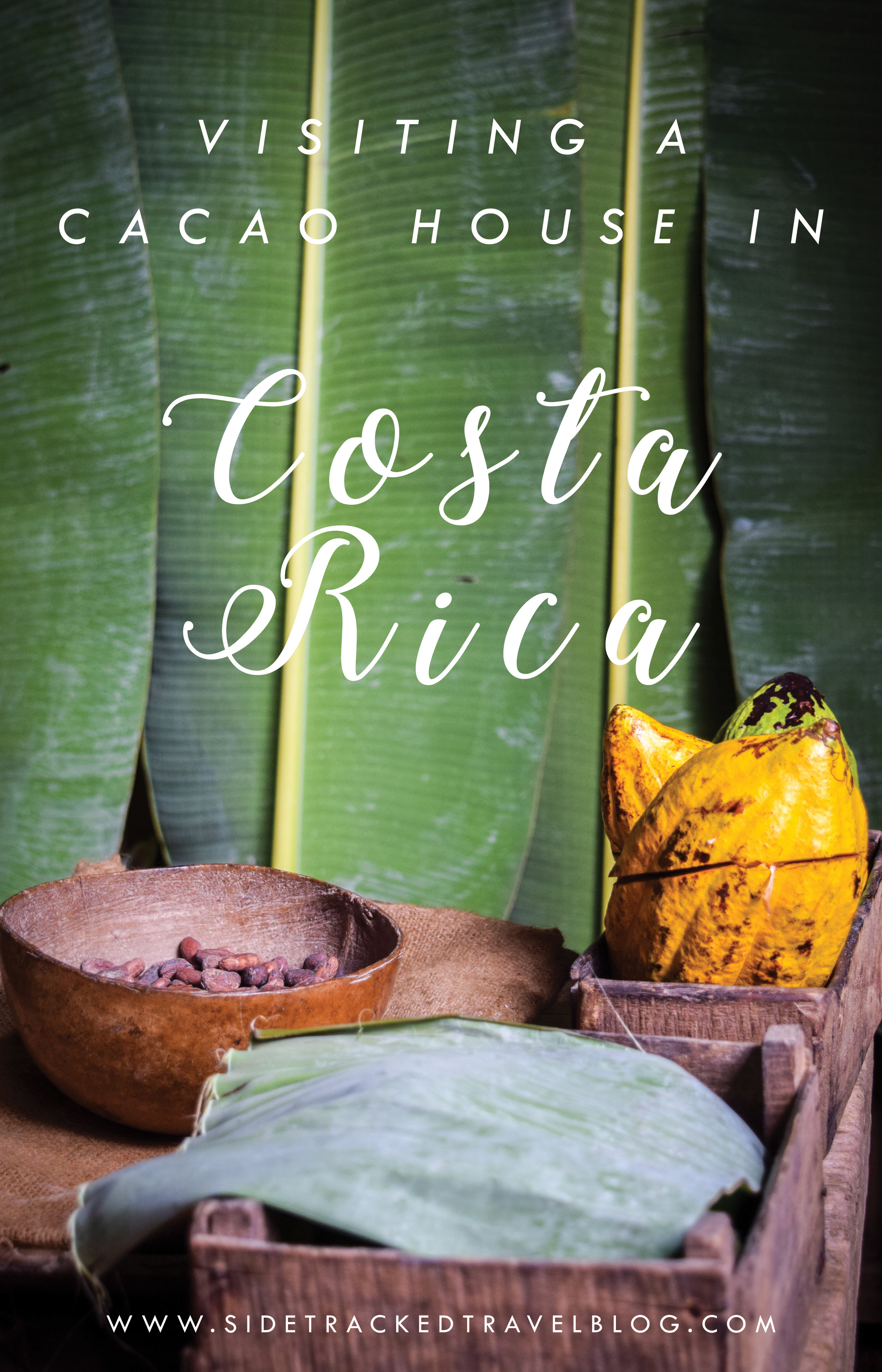 At the cacao house, the stories of chocolate production and the history of the Bribri tribe meet, and through watching the demonstration and learning about the industry, you'll find out just how this plant has shaped the history of Costa Rica, and is still shaping society today.