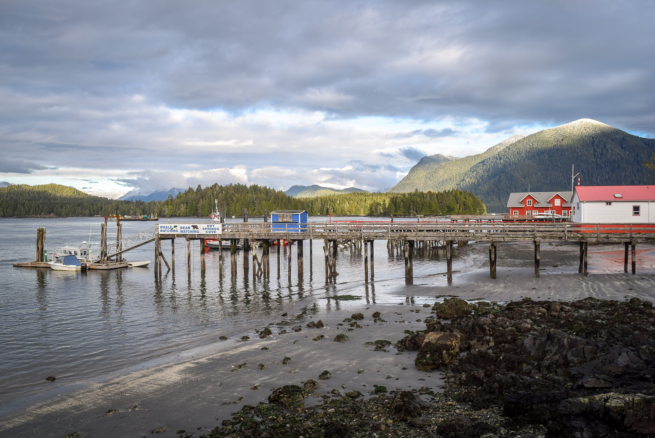 Pier and waterfront in Tofino