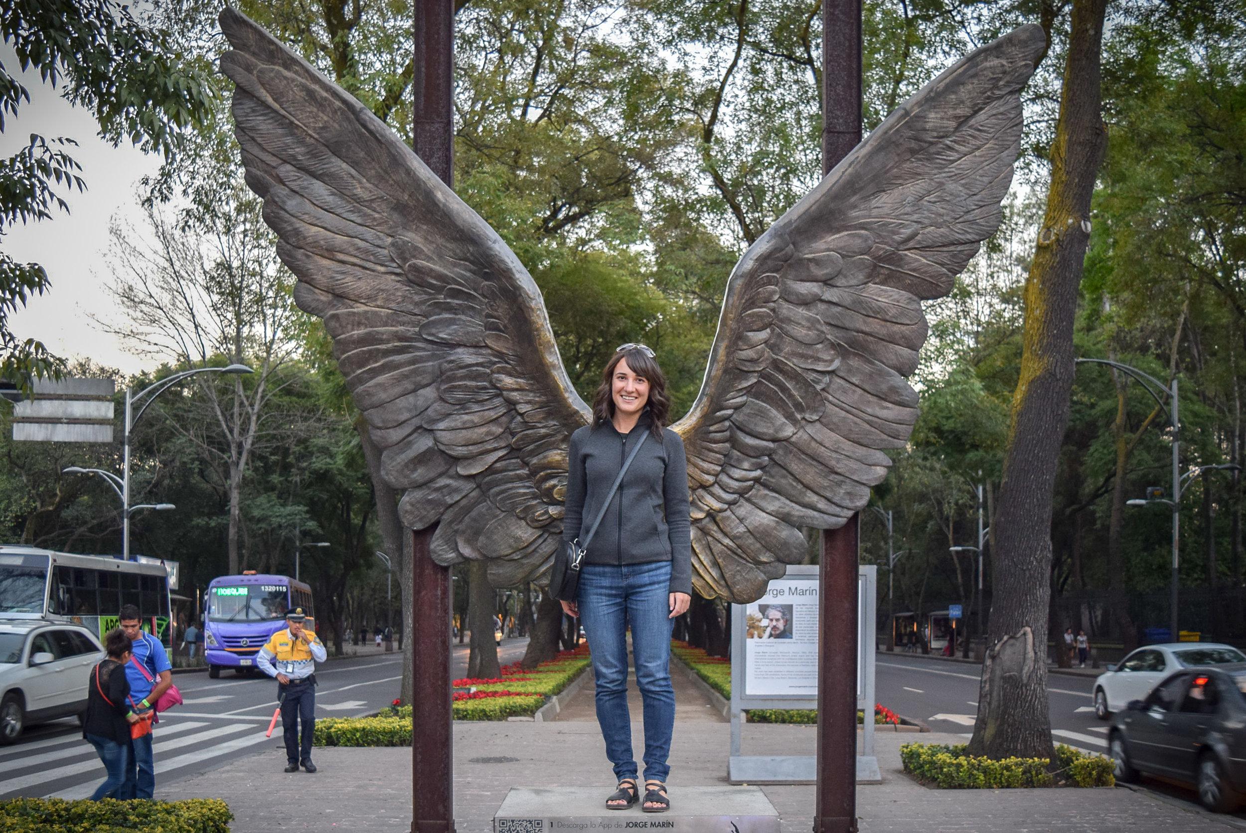 Alas de la Ciudad Chapultepec