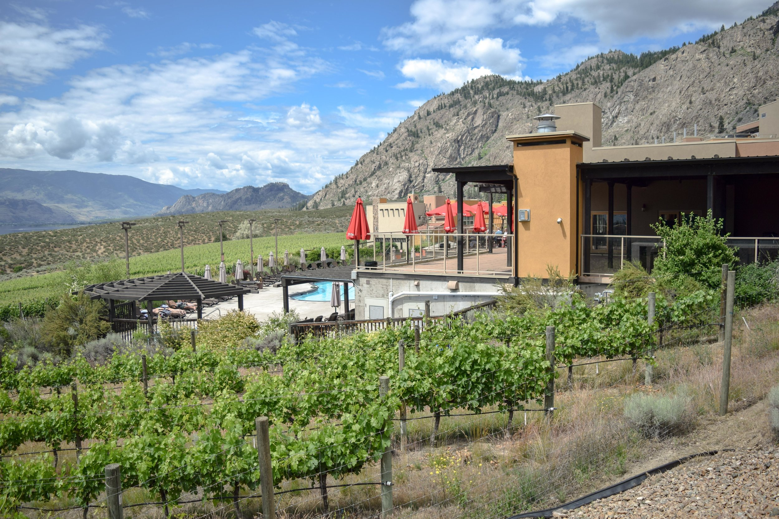 Spirit Ridge at Nk'Mip and vineyards
