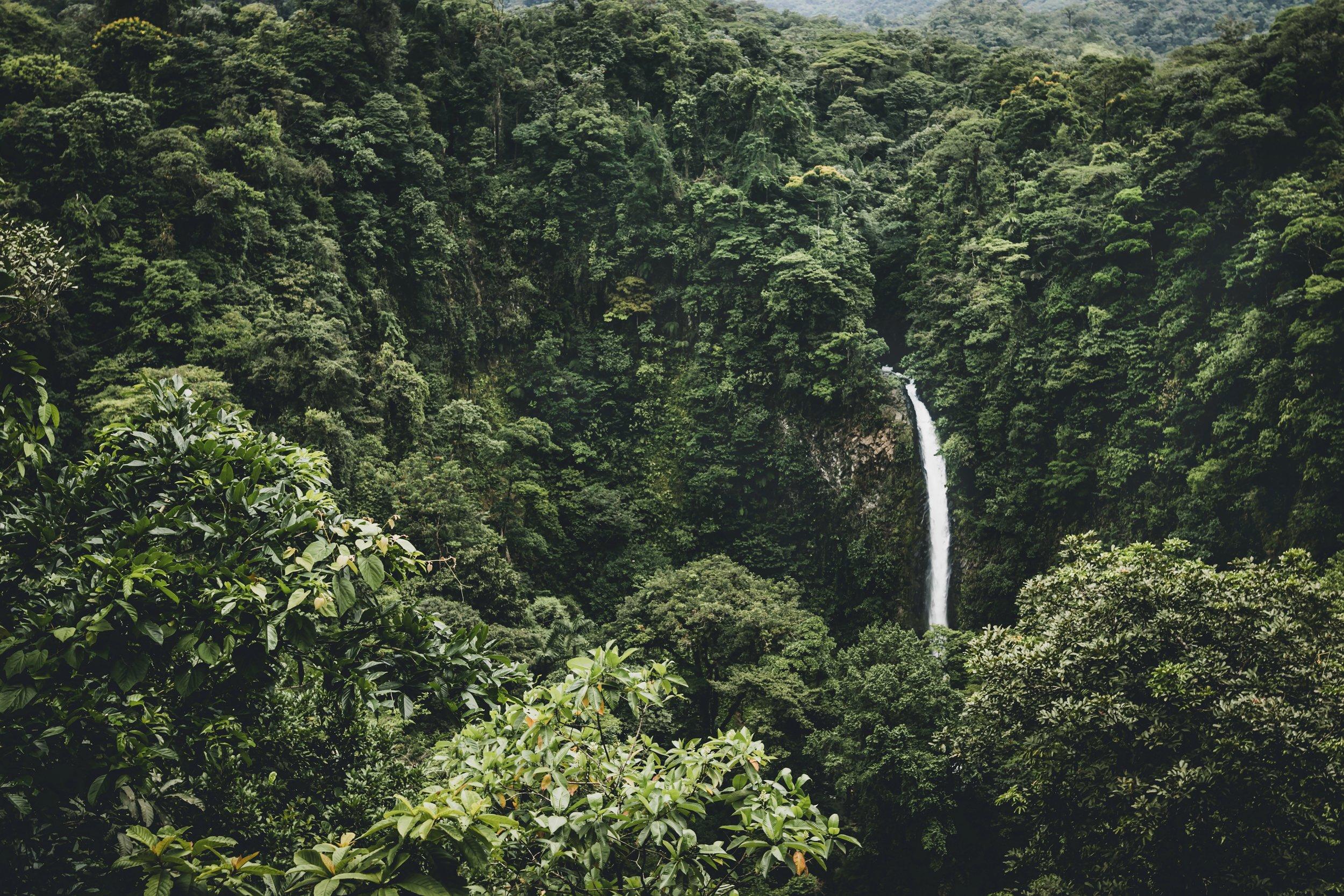 Waterfall in the jungle of Costa Rica