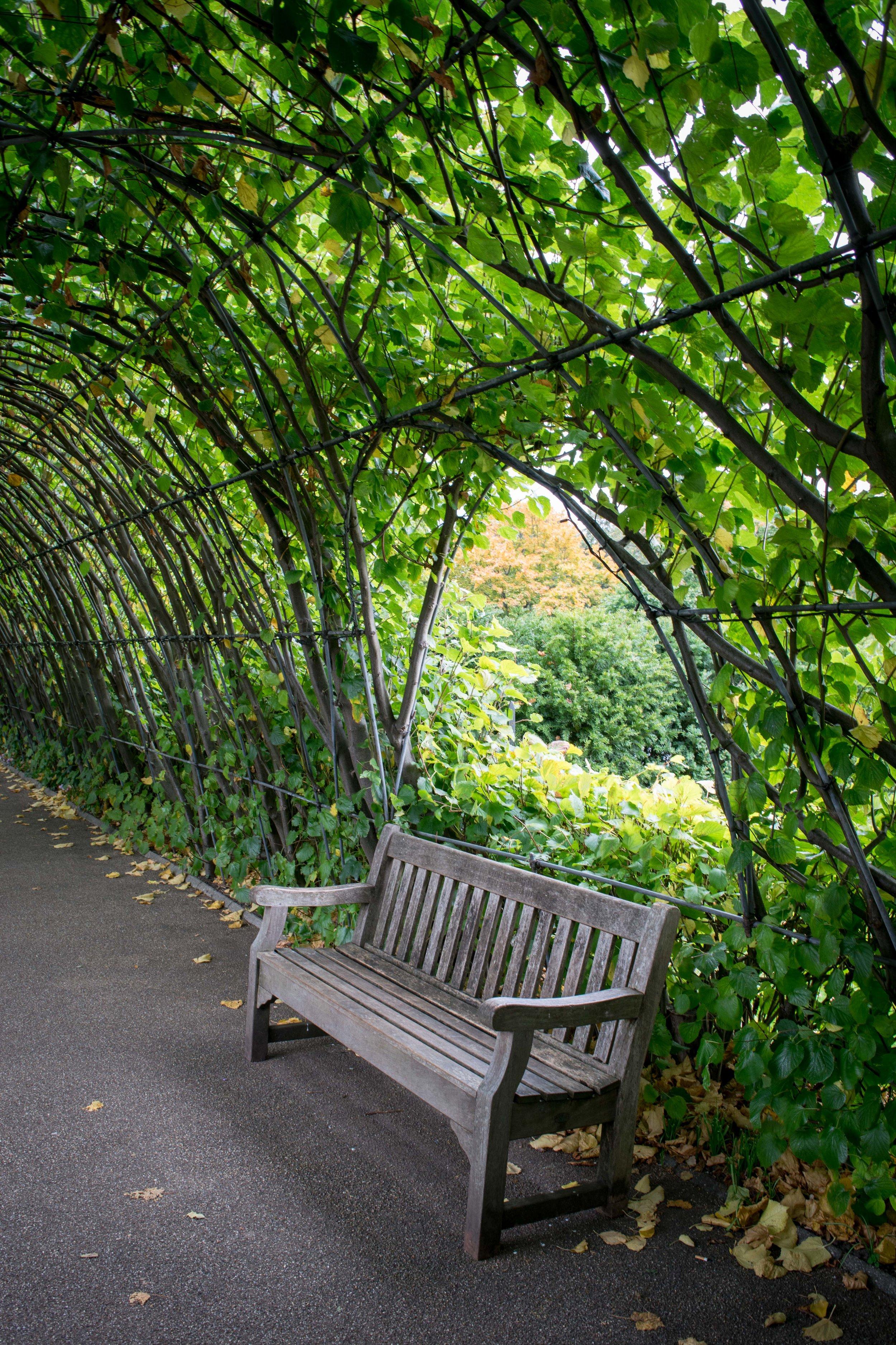 Bench in Kensington Gardens