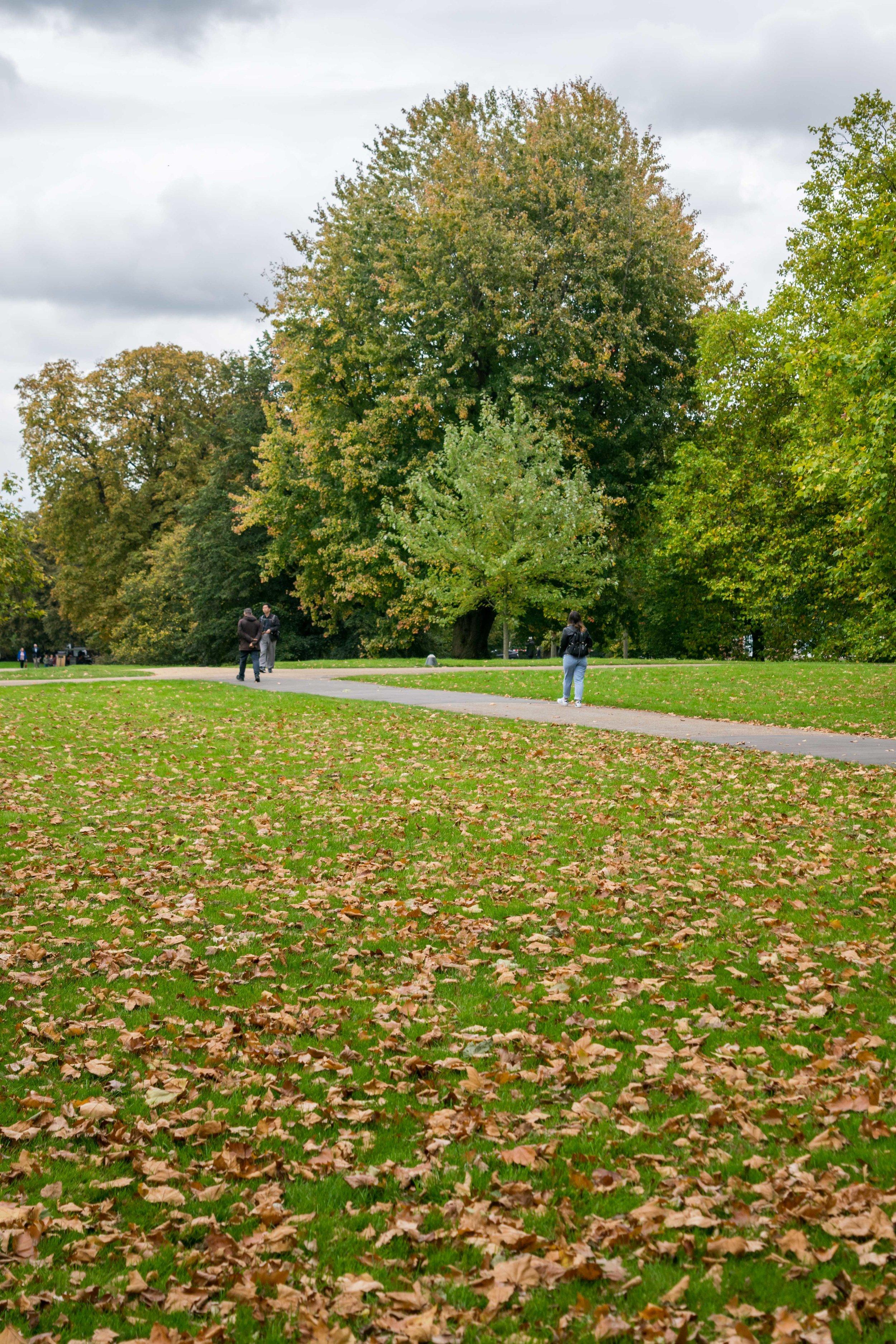 People walking in Hyde Park