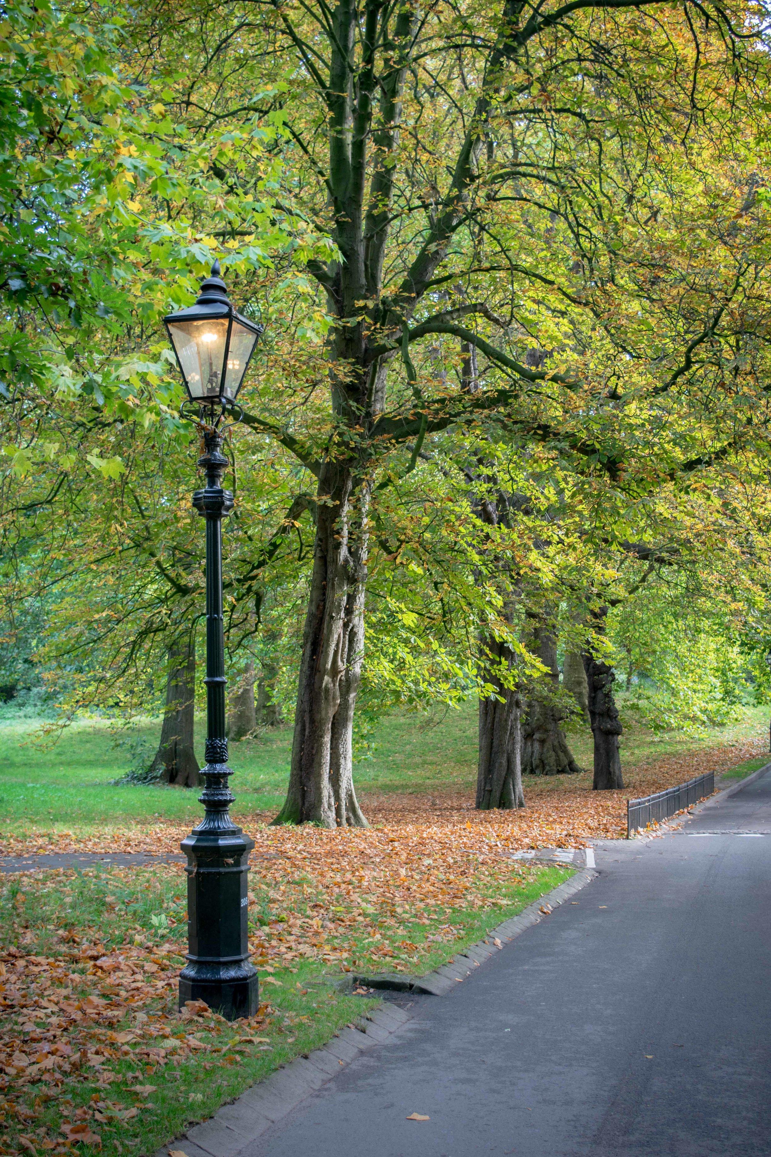 Lamppost in Hyde Park