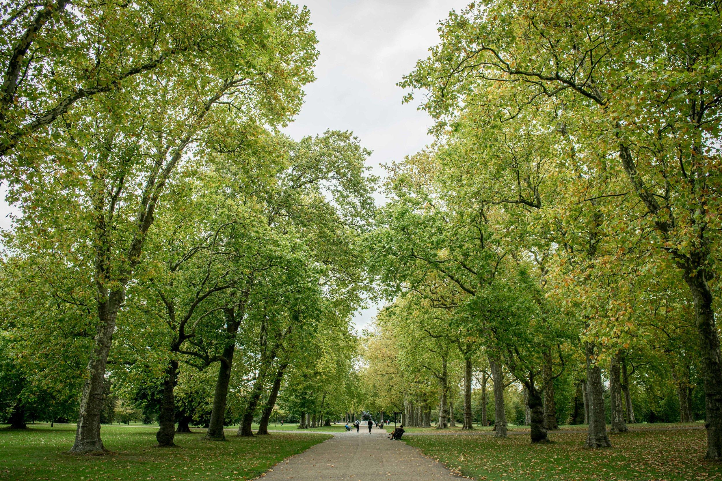 Wide promenade in Hyde Park