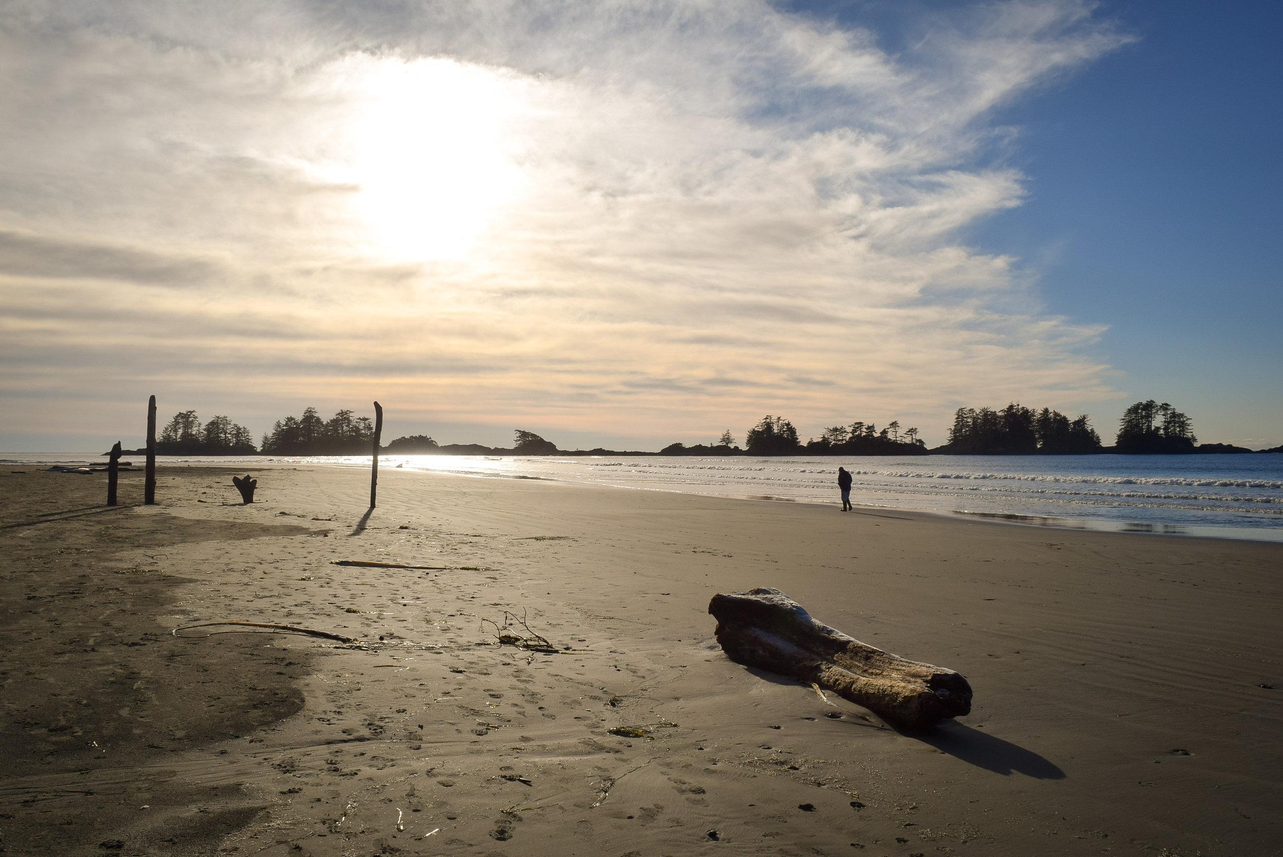 Beachcombing on Chesterman Beach