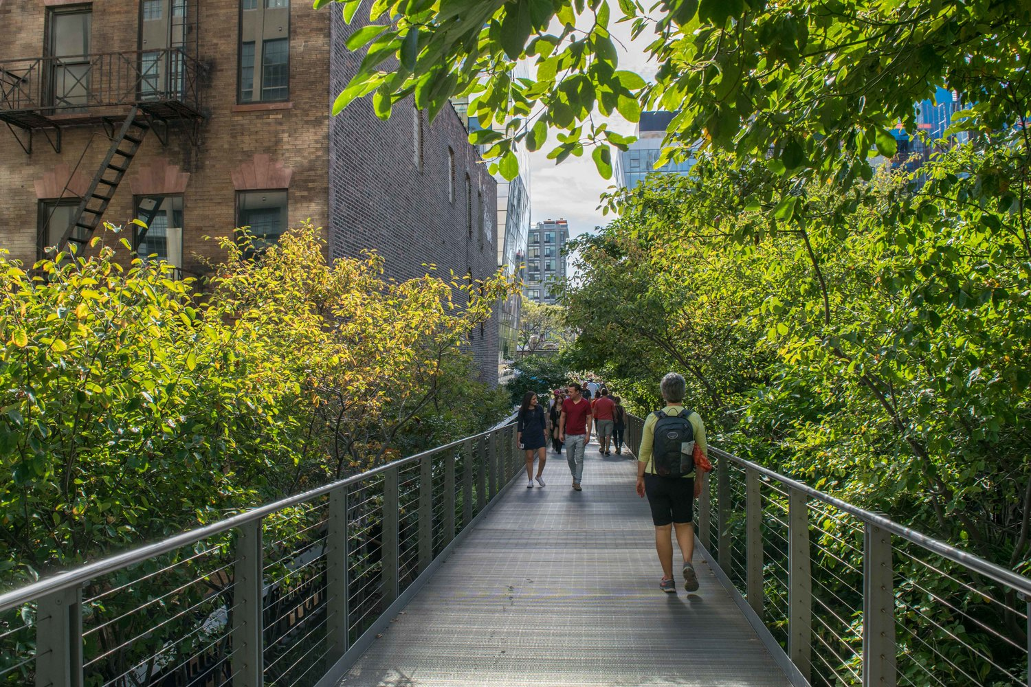 A Guide to Walking the High Line in New York — Sidetracked