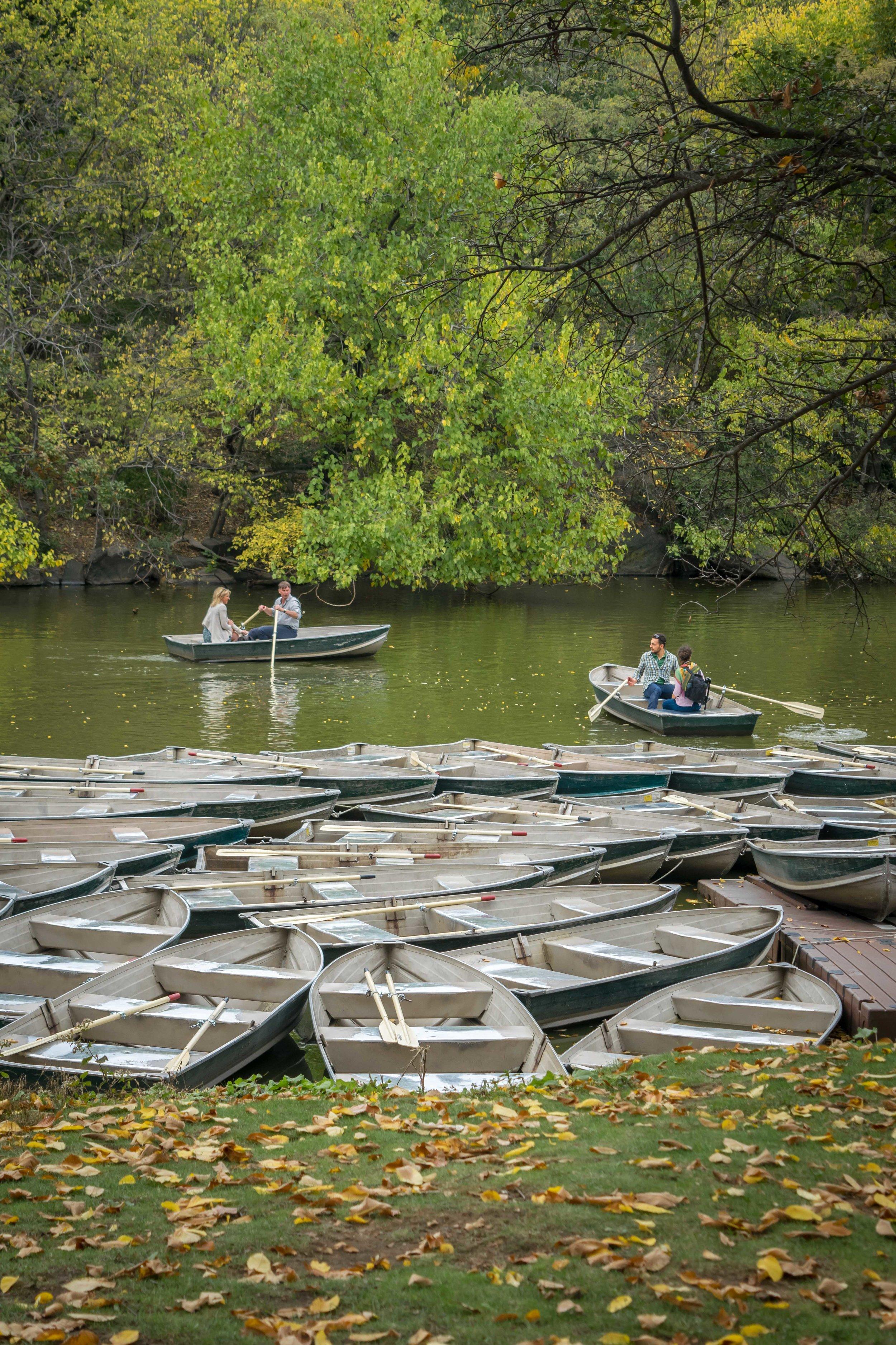Rowboats on The Lake