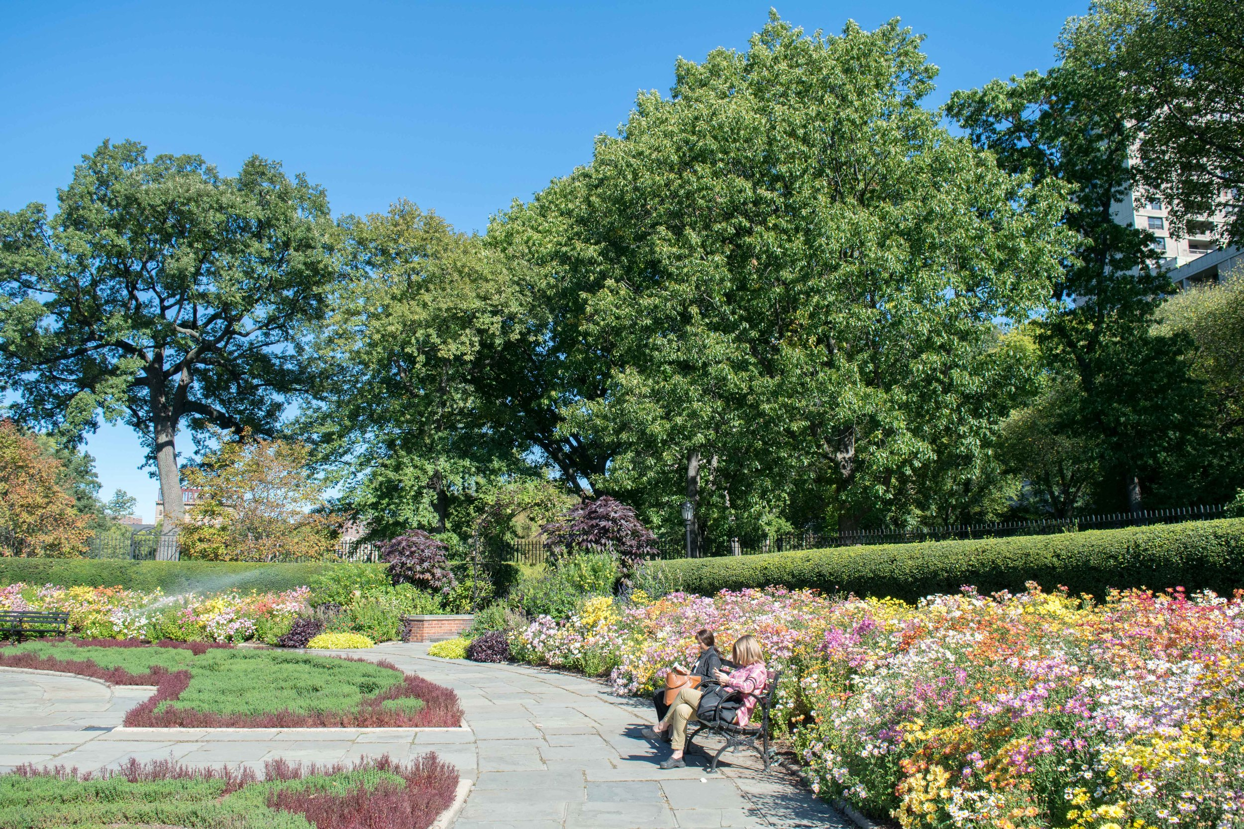 Flowers blooming in Conservatory Garden