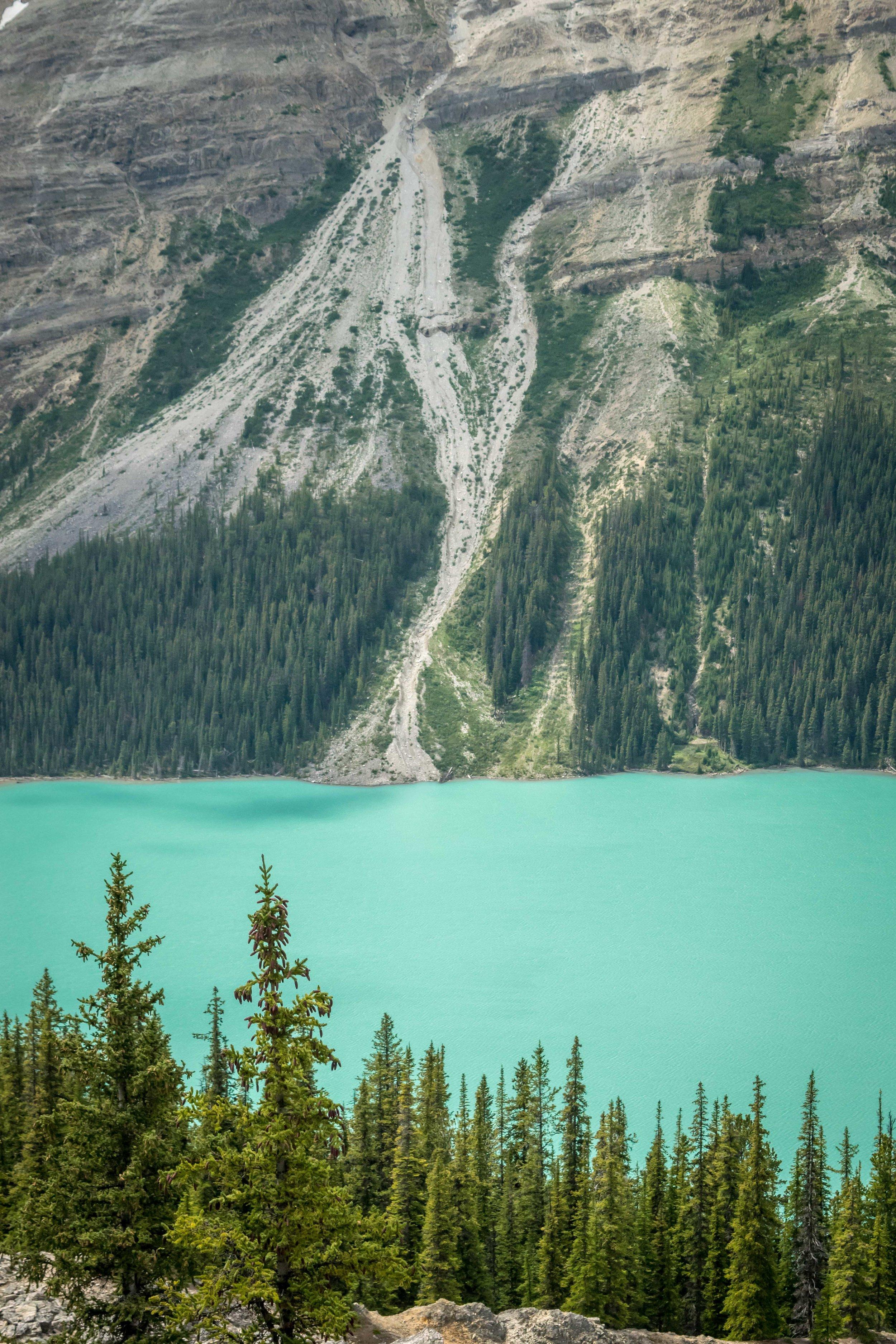 Turquoise water of Peyto Lake