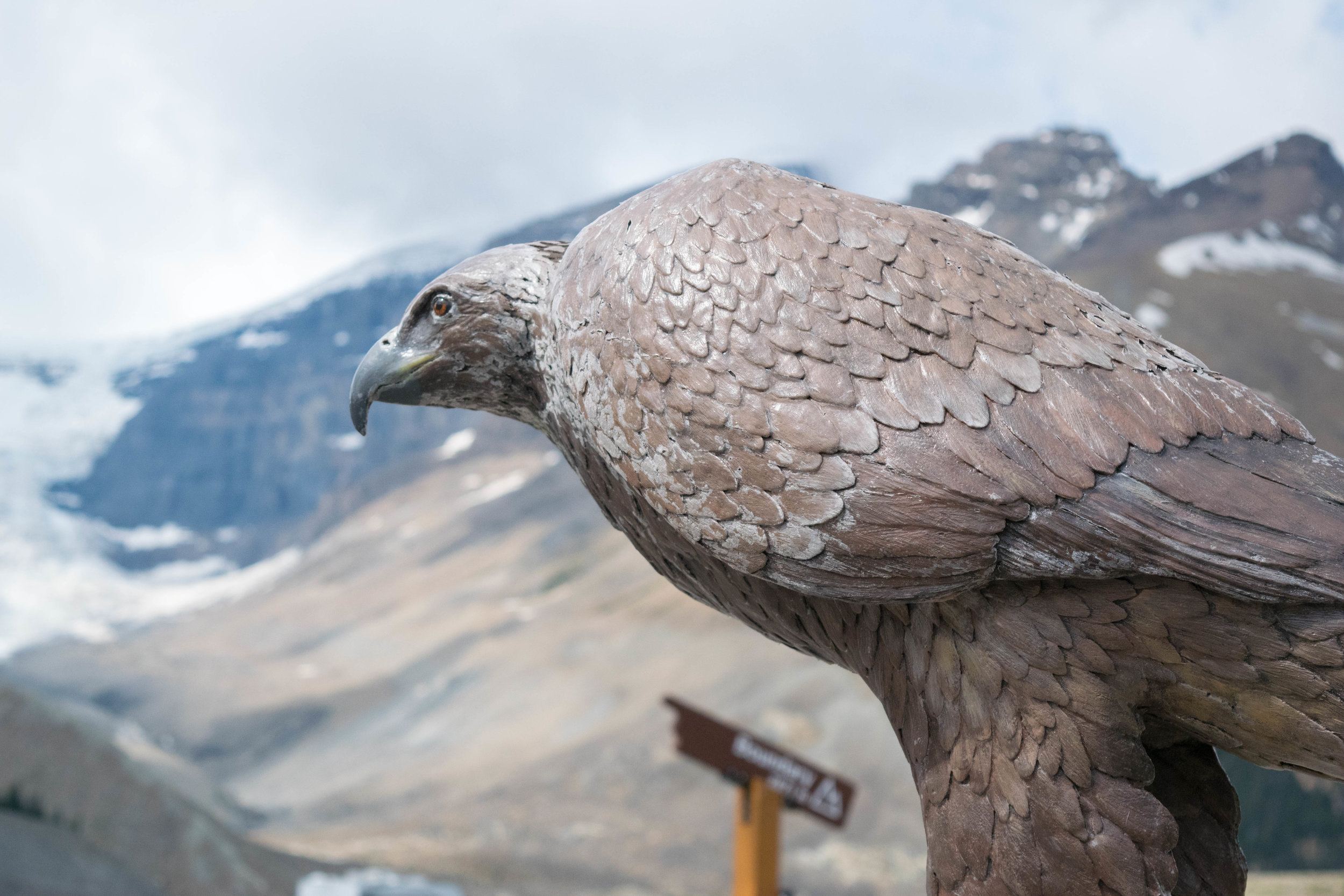 Eagle sculpture at the Columbia Icefields