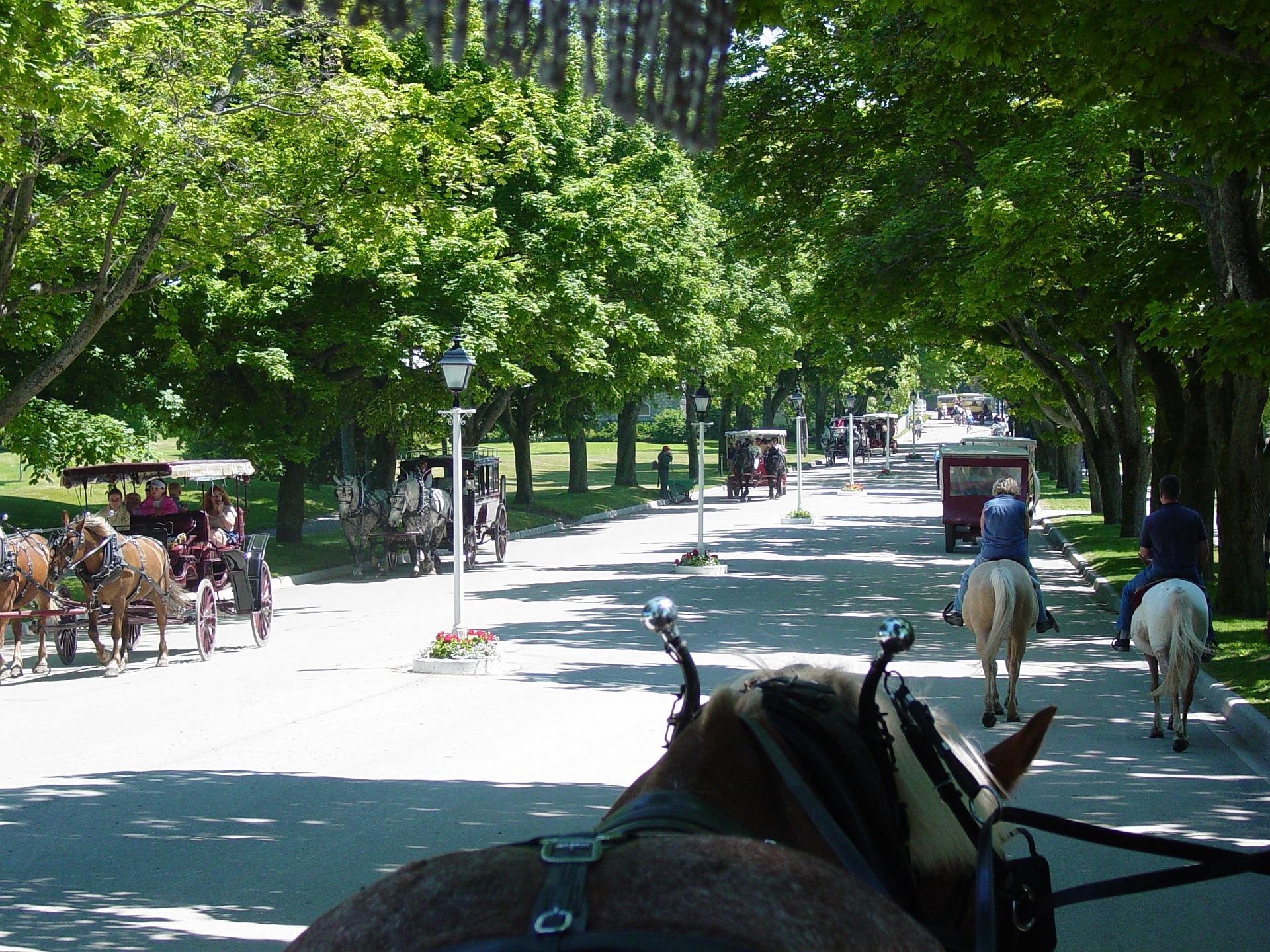 Horse drawn tour Mackinac Island