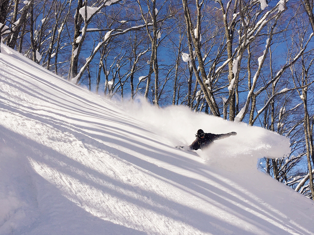 What You Need to Know About Skiing in Japan