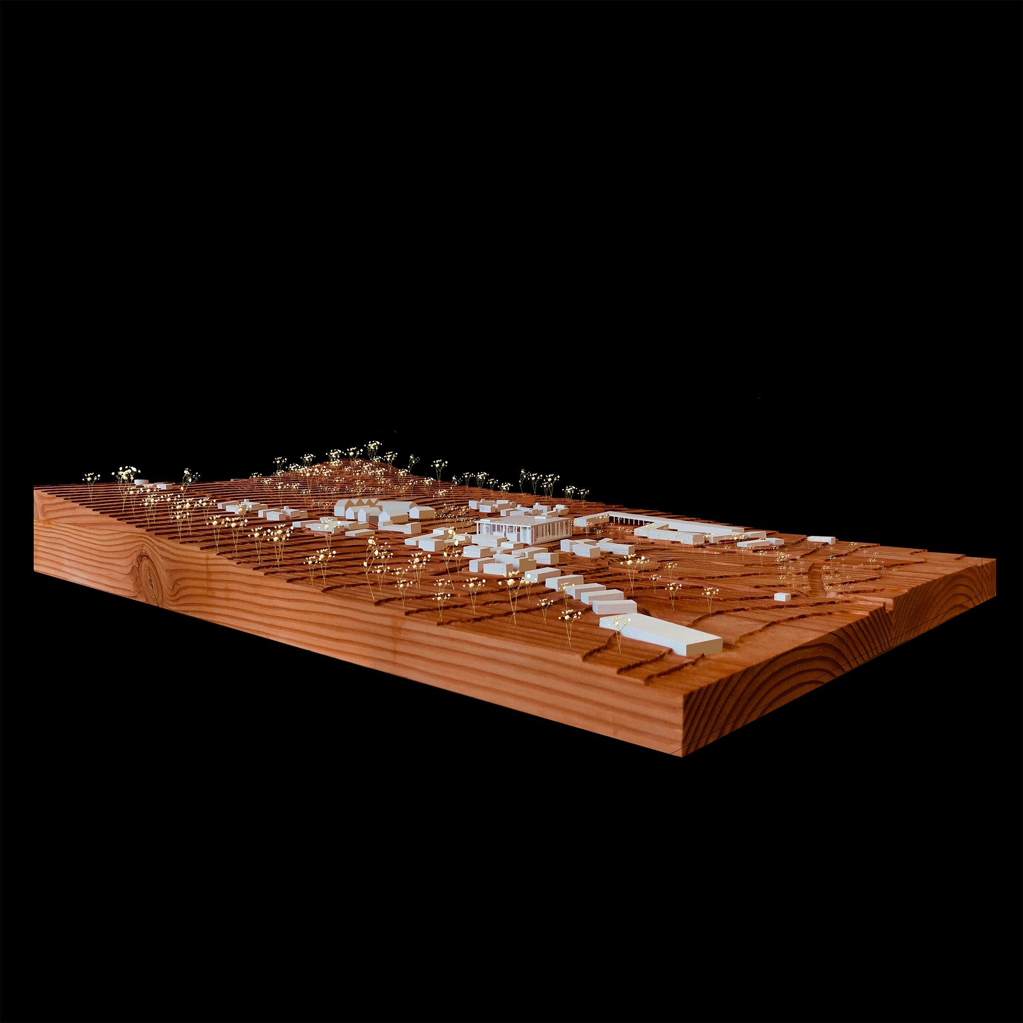 "Cedar and Basswood Model (12"" x 18"")"