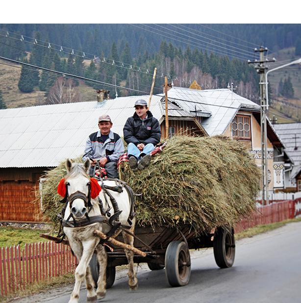 Romanian_Hay_Wagon tall.jpg
