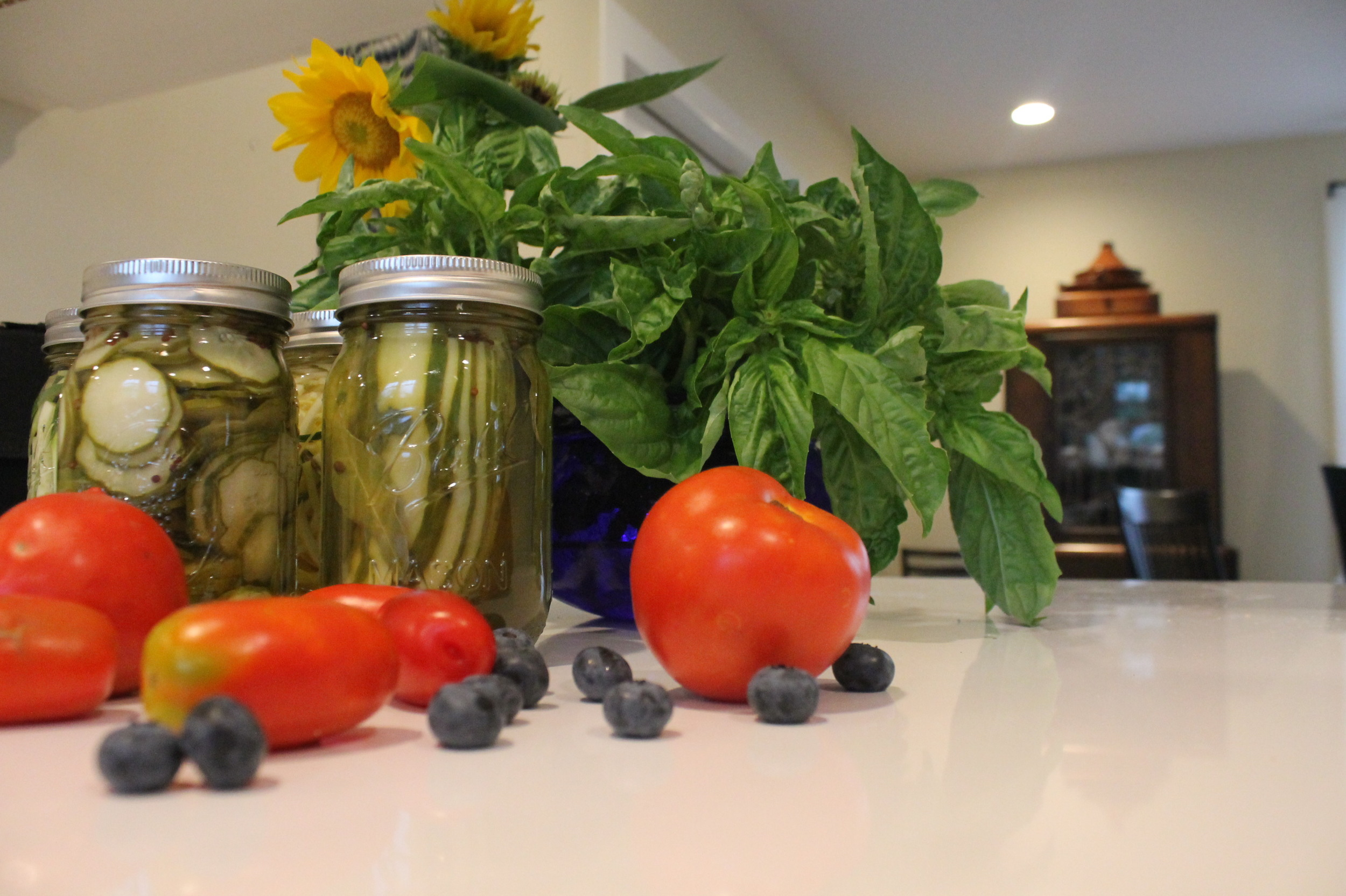 "I call this tableau ""July"" - let the pickling and canning commence!"