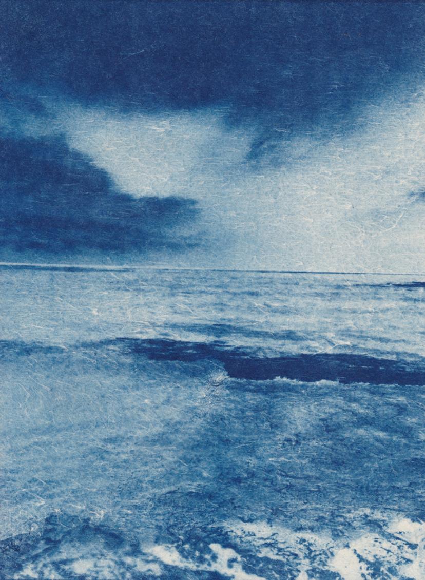 "Ocean  cyanotype, 8.5"" x 11.5""h  2017"