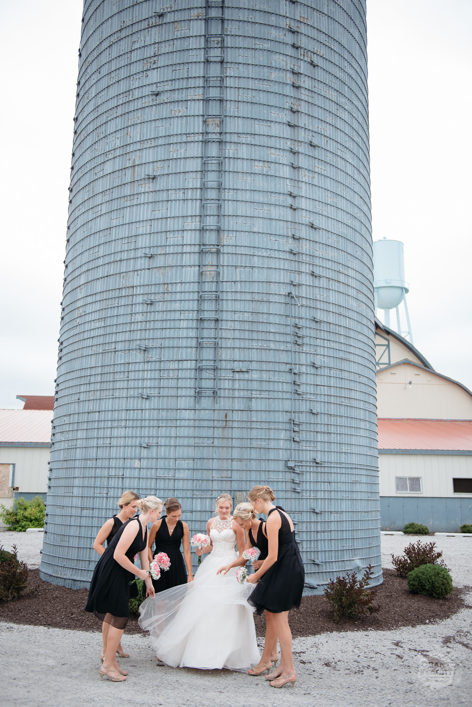 Kendalville wedding photographer Grant Beachy -4.jpg