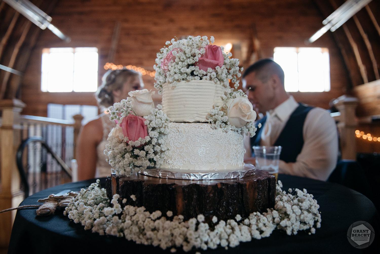 Kendalville wedding photographer Grant Beachy -34.jpg