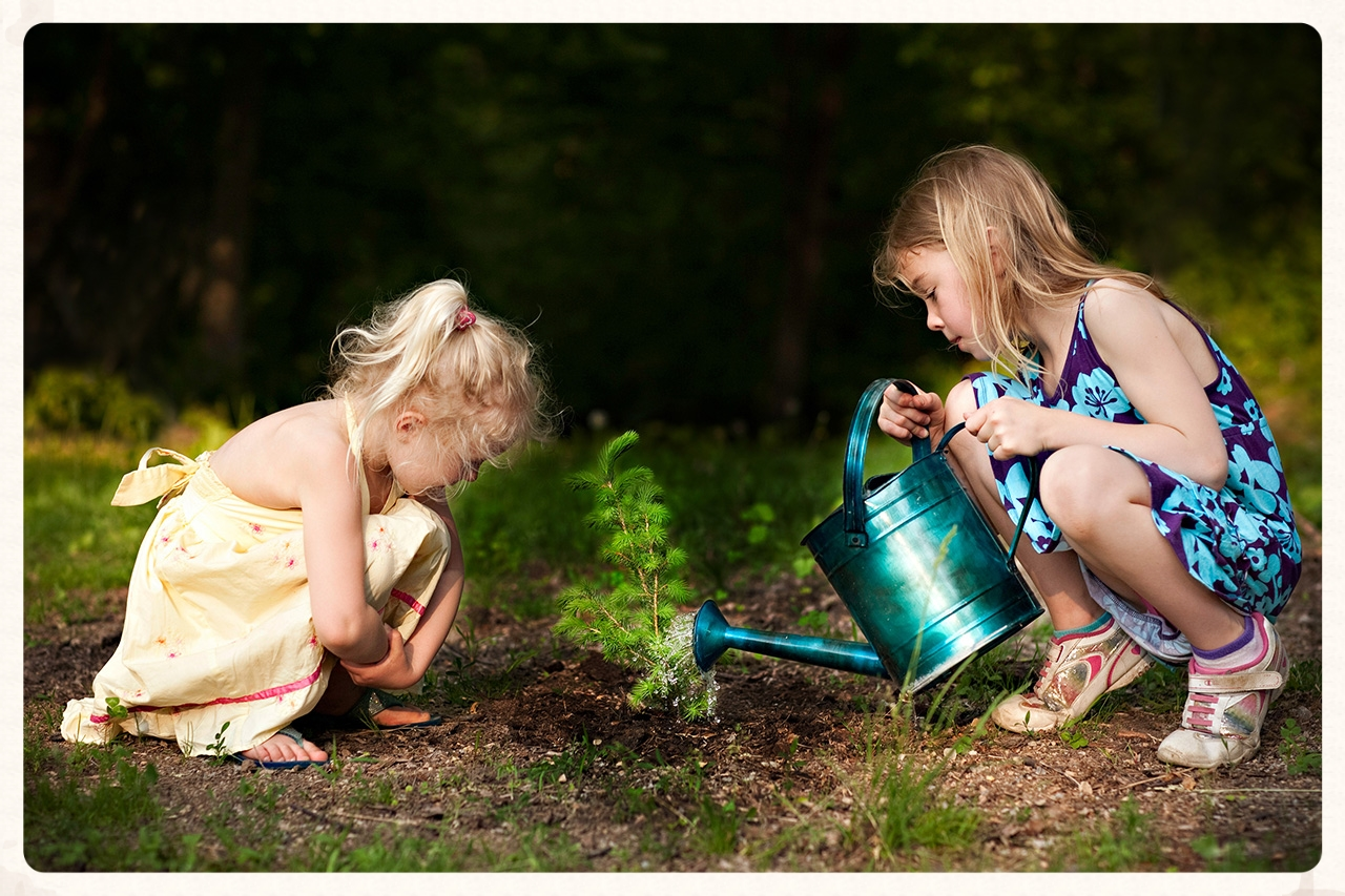 Lily and Cecelia Zahn planting a seedling pine tree in the woods at Grandpa's house near Beaver Dam, WI.