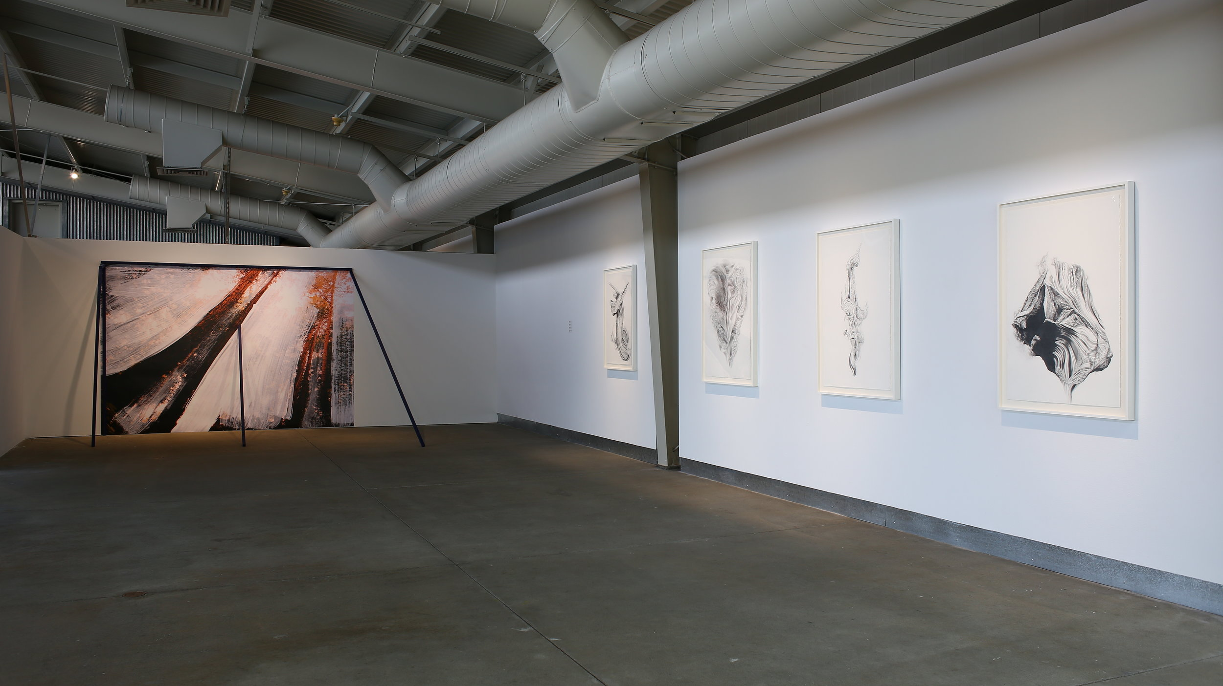"""Radical Landscapes"" exhibition at di Rosa. Photo credit: Wilfred J. Jones"