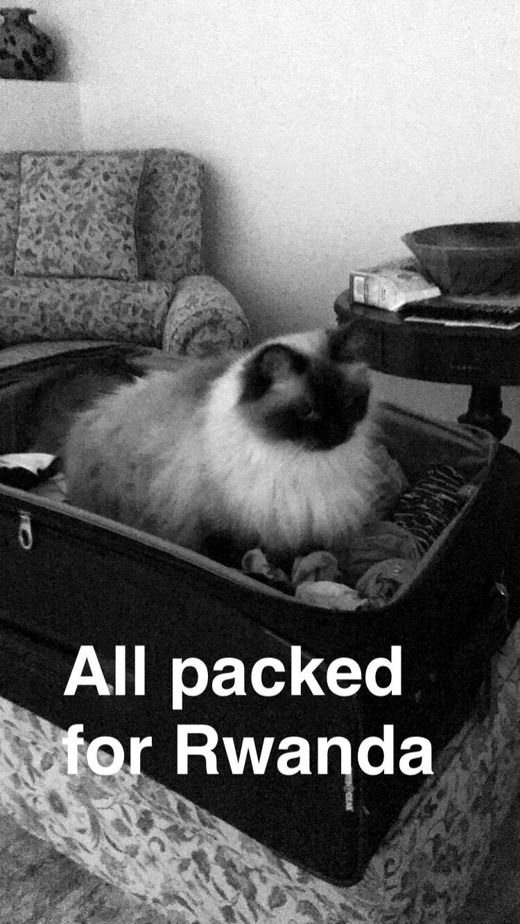 Maggie in the Suite Case