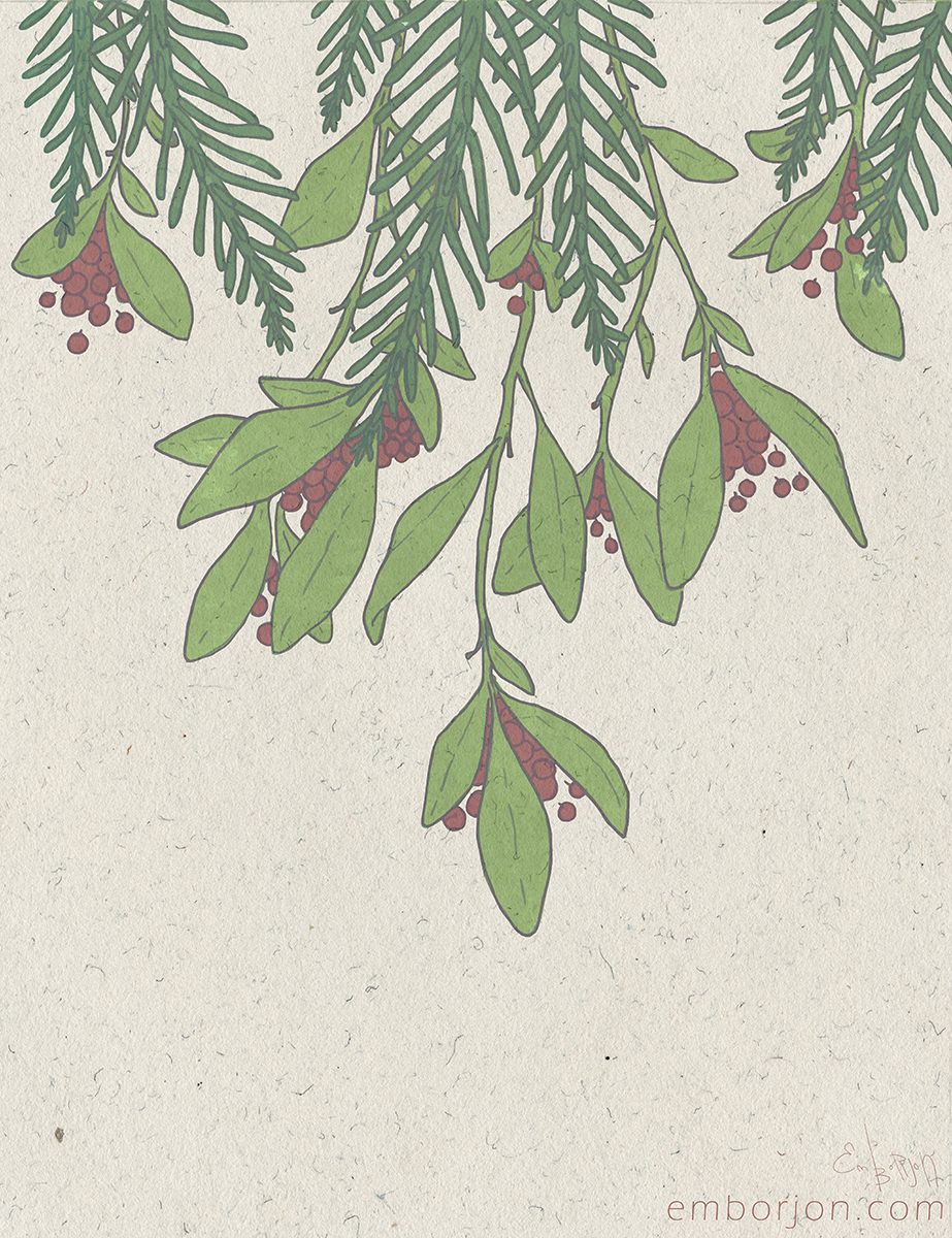 berries - emborjon