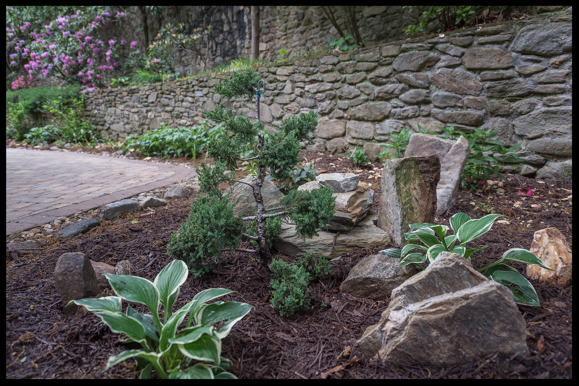 LANDSCAPE INSTALLATIONS - Click here to learn more about our services...