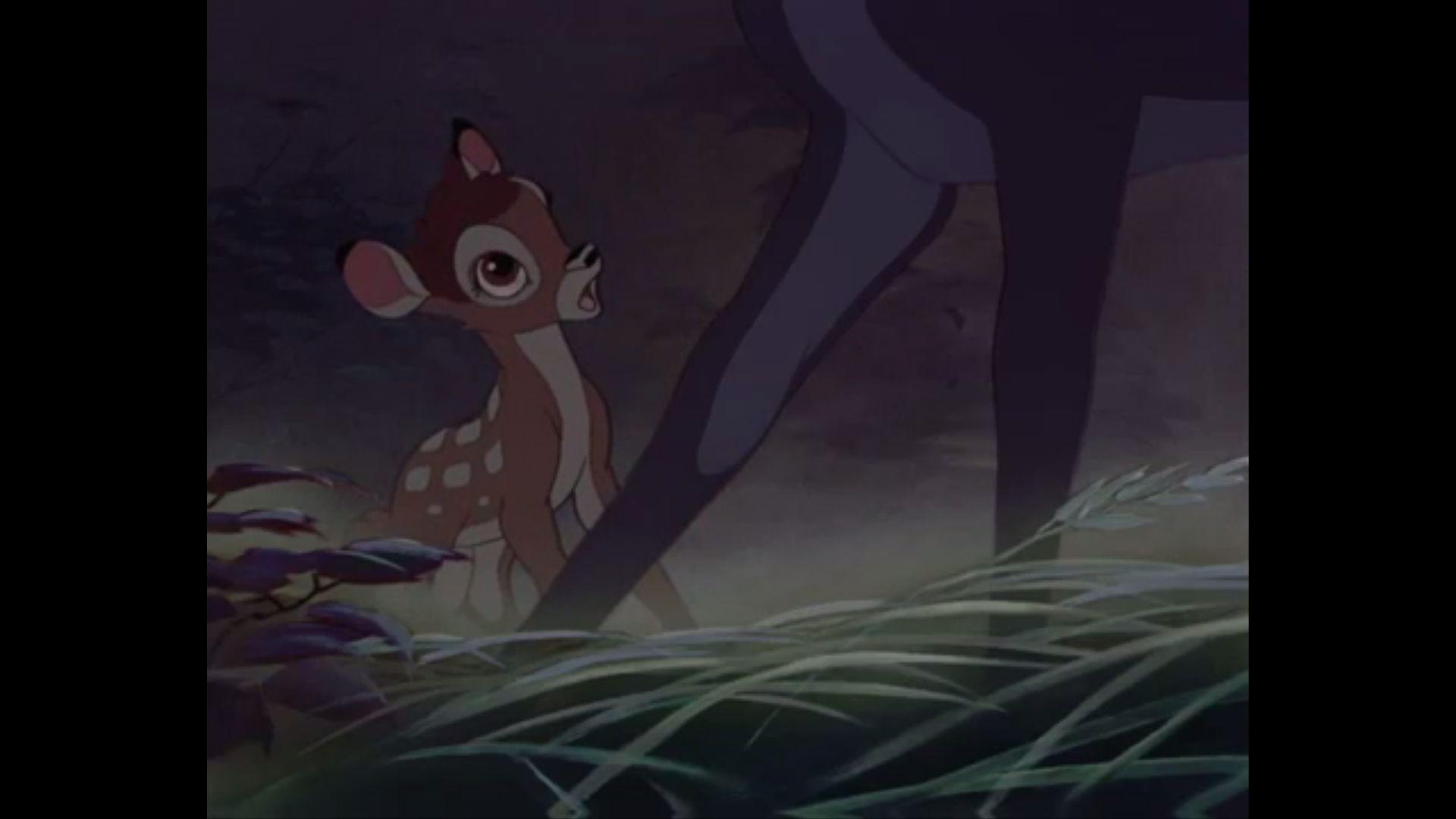 332 Bambi - Meadows.jpg