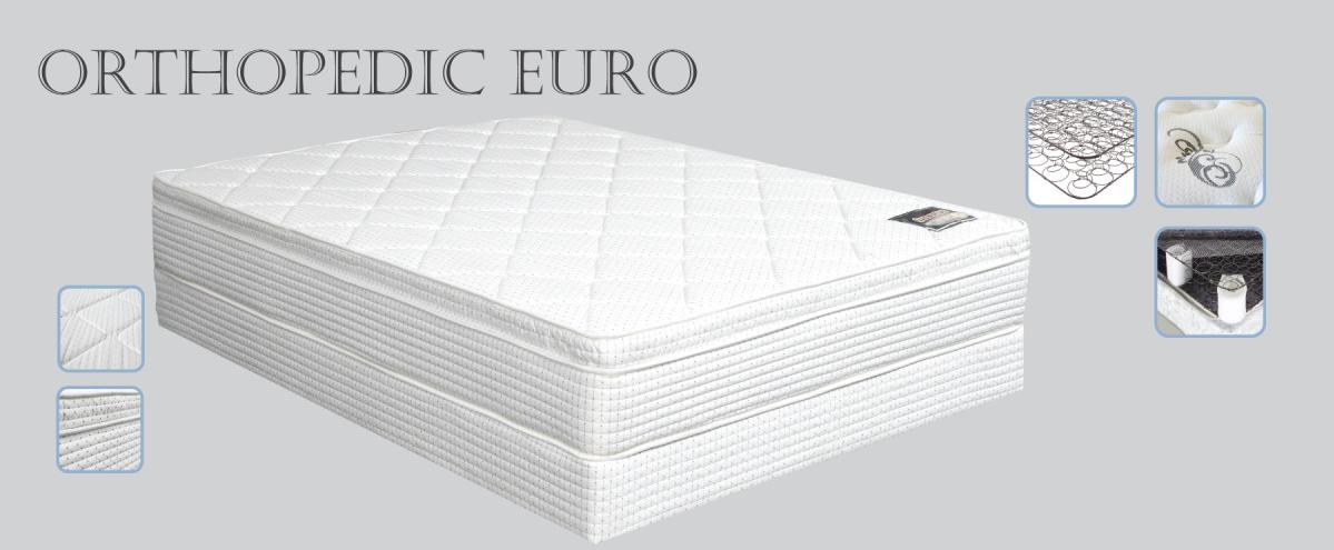 Orthopedic Euro
