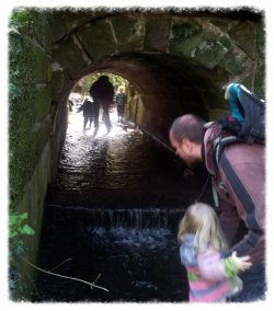 Under the Bridge at Lumb Brook Valley