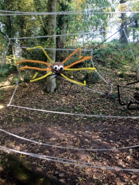 Our spooky spider web for halloween.