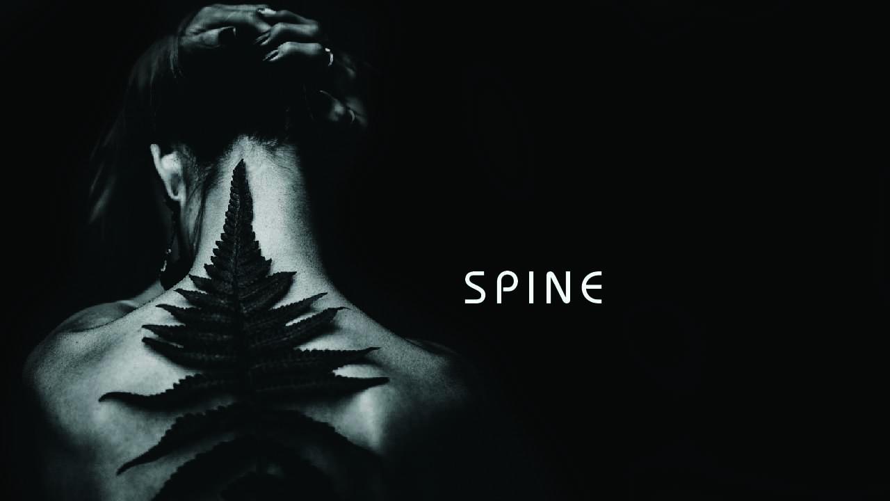 YSS_April_Anatomy_yoga_0003_3-spine.jpg