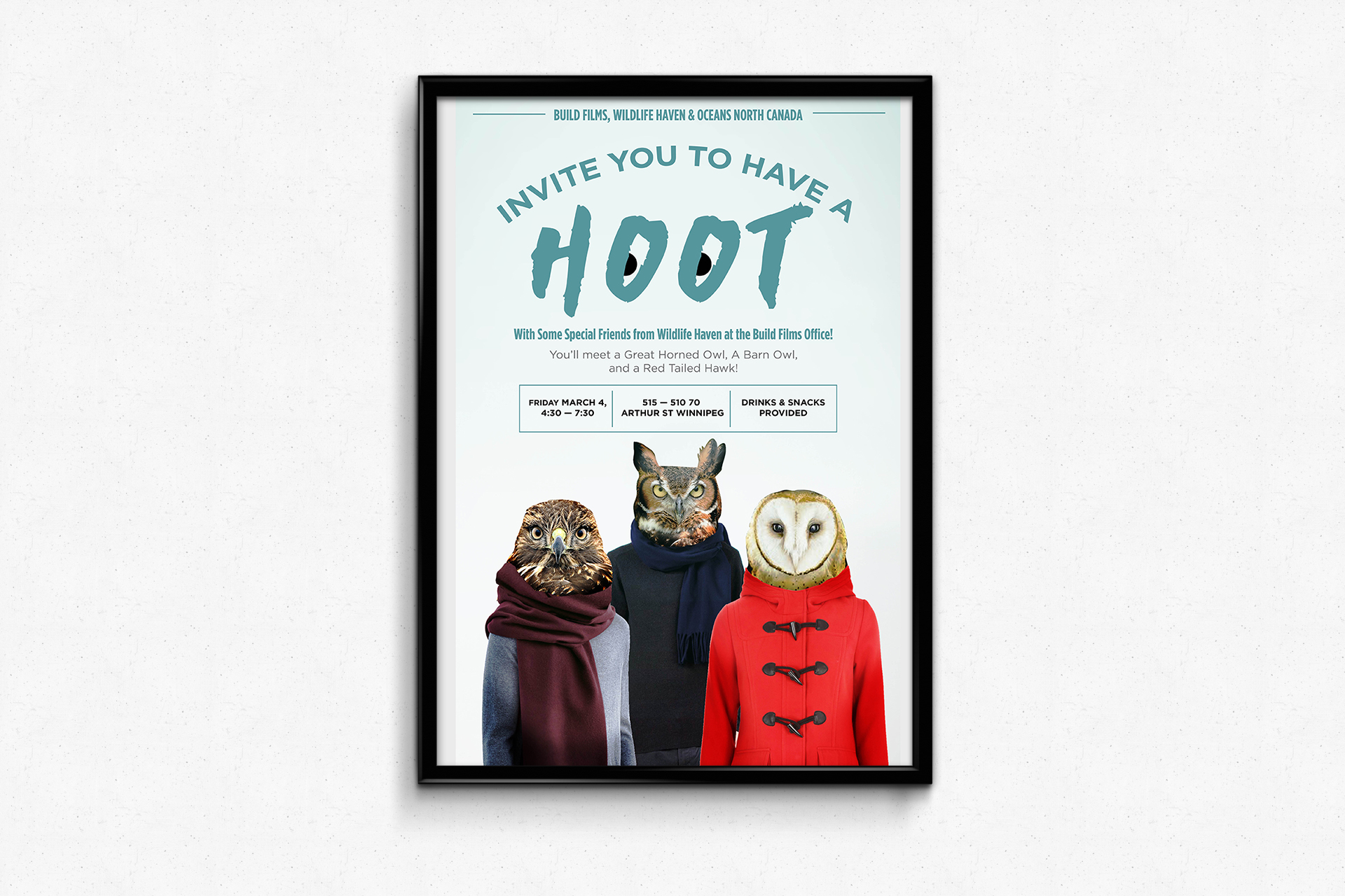 Have a Hoot