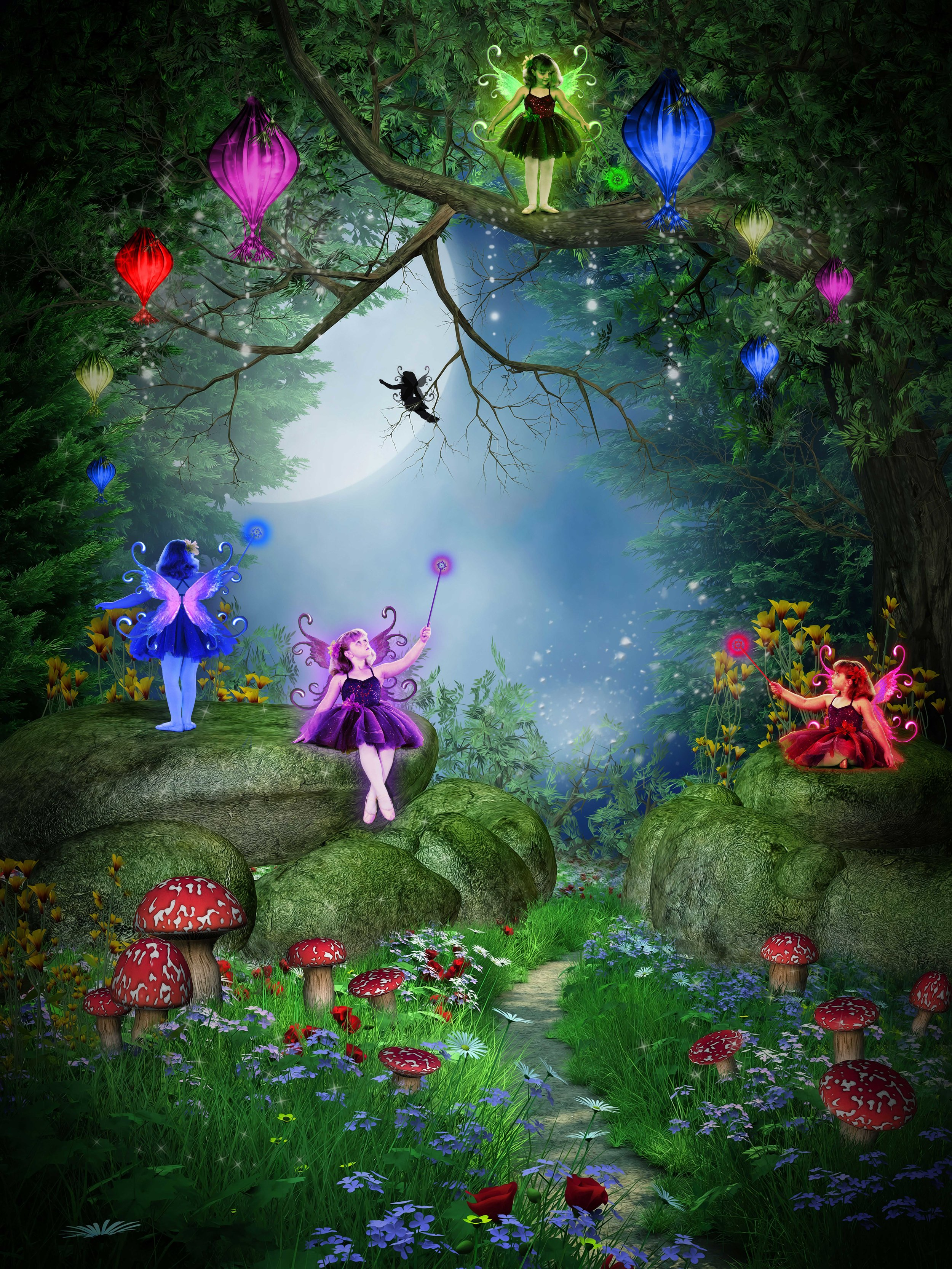 The Fairies